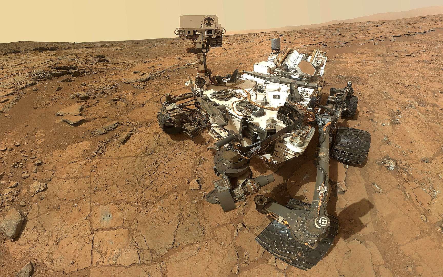 Curiosity : emplacement des caméras. Emplacement des caméras sur le rover. Sept caméras se trouvent sur le mât de Curiosity : 4 caméras en noir et blanc, 2 en couleurs (Mastcam) et RMI (Remote Micro Imager). À l'extrémité du bras robotisé se trouve Mahli (Mars Hand Lens Imager) qui doit réaliser des clichés du sol martien. D'autres caméras (Hazcams : Hazards-Avoidance Cameras) sont destinées à l'évitement des dangers. À l'arrière du rover : Mardi (Mars Descent Imager). © Nasa, JPL-Caltech