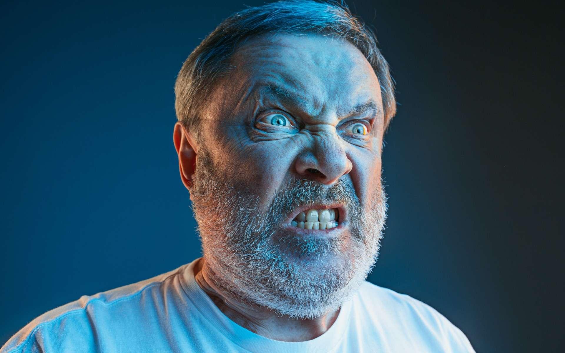 L'agressivité n'est pas bonne pour la santé cardiovasculaire. © master1305, Adobe Stock
