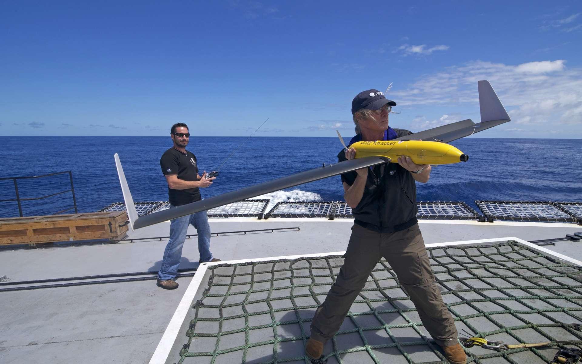 Le moratoire sur la chasse à la baleine à débuté en 1986 mais le Japon continue la chasse sous couvert d'étude scientifique. © Sea Shepherd Conservation Society