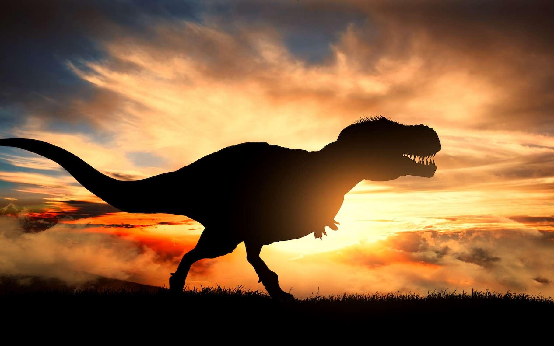 Selon des chercheurs du Field Museum (États-Unis), les T-Rex connaissaient des poussées de croissance que ne connaissaient pas tous leurs cousins théropodes. © ginettigino, Adobe Stock