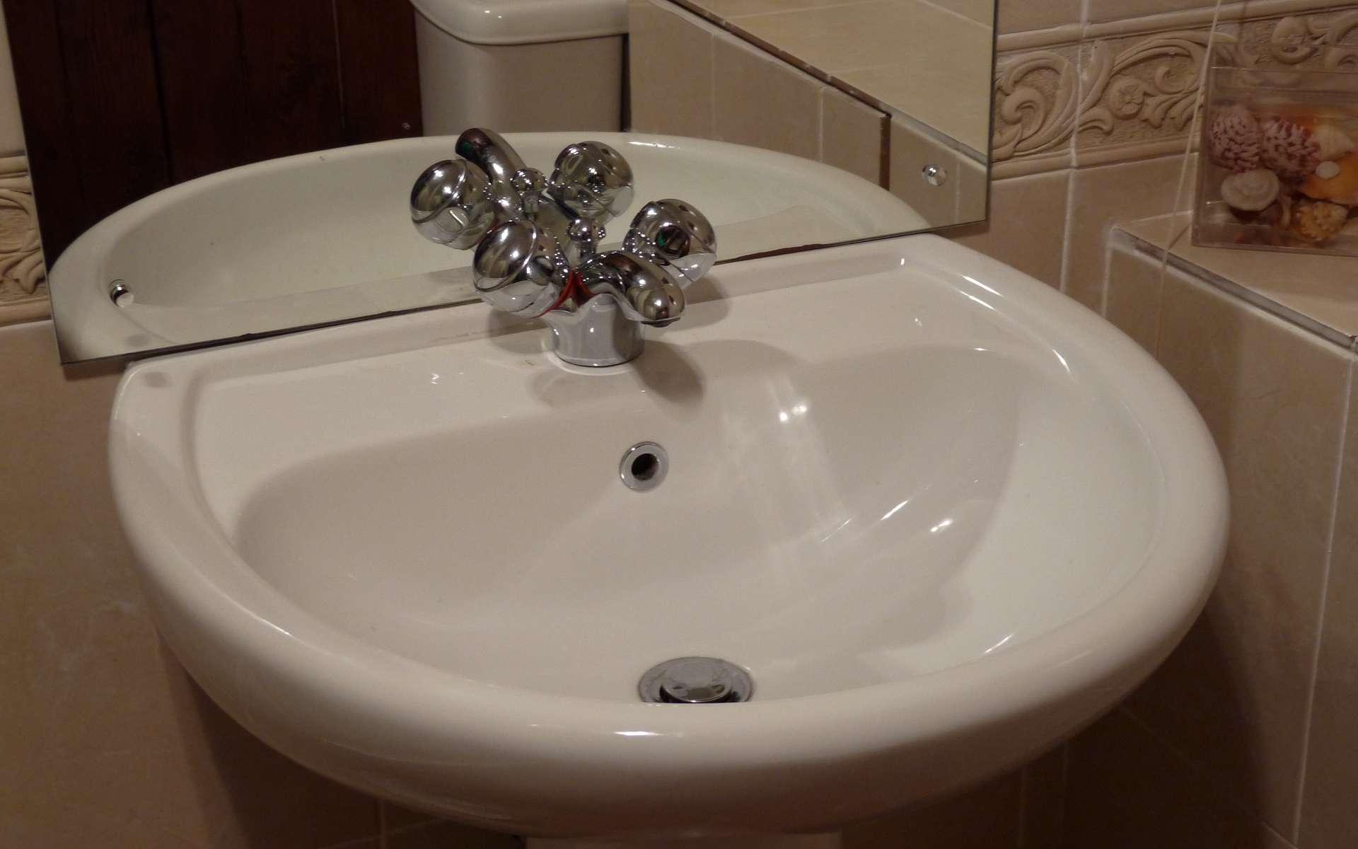 Le mélangeur est un robinet à deux soupapes mais une seule sortie d'eau. © Chris McKenna, Domaine public, Wikimedia Commons