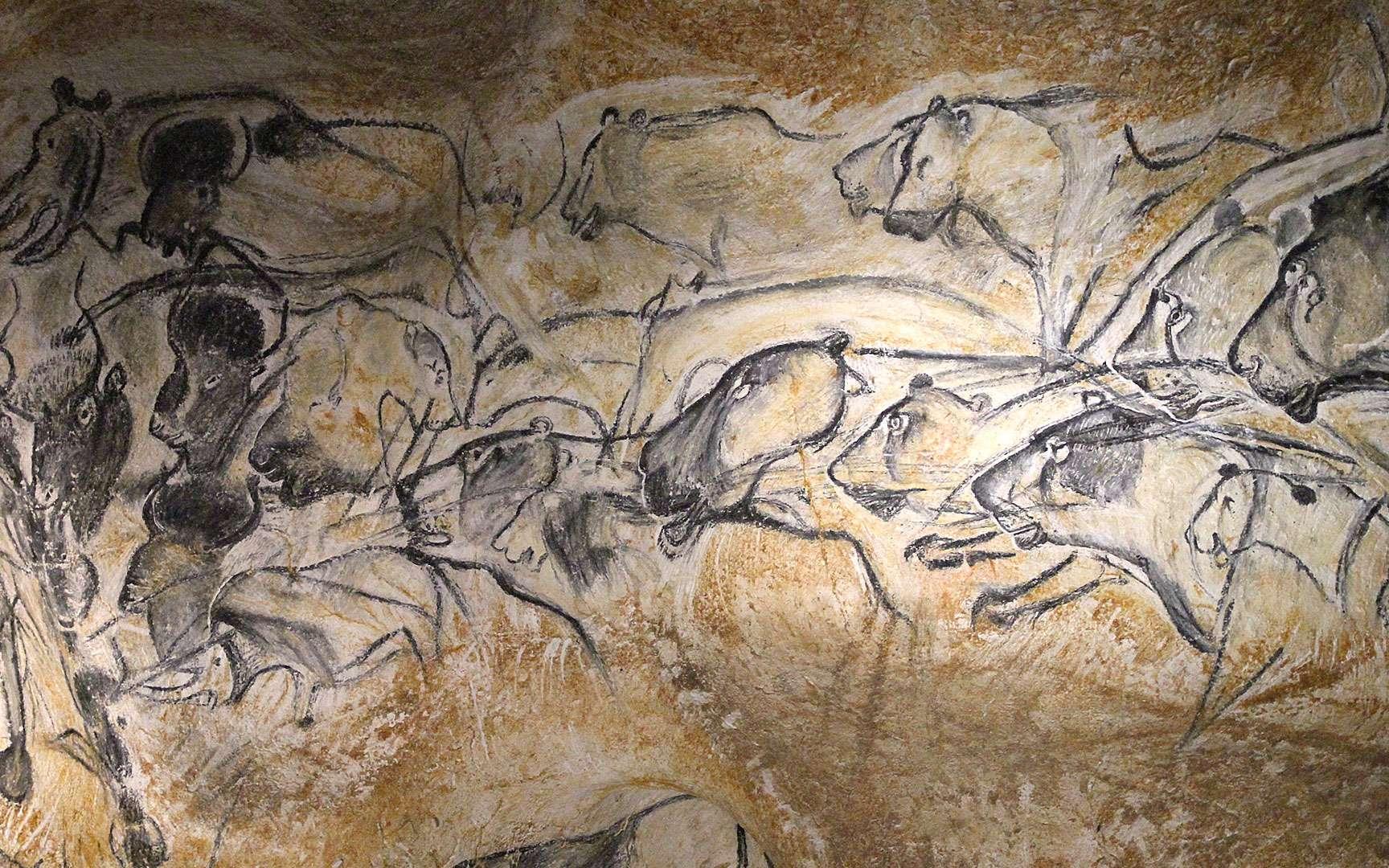 Fresque avec lionnes et rhinocéros, dans la grotte Chauvet, en France. © Claude Valette, CC by-nc 4.0