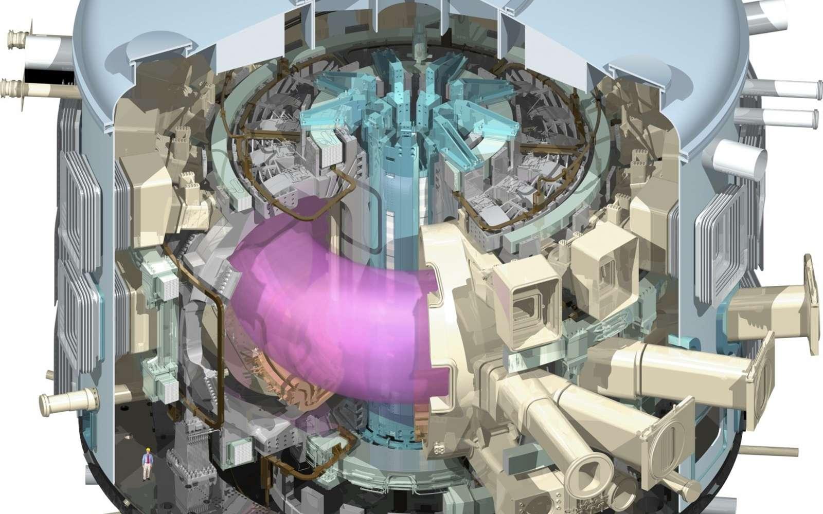 Une coupe du réacteur Iter en fonctionnement avec le plasma chauffé en violet. Crédit : www.iter.org