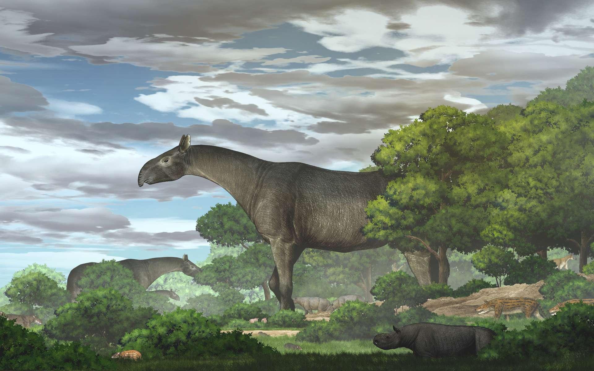 Reconstitution d'un rhinocéros géants et son environnement dans le bassin de Linxia au cours de l'Oligocène. © Tao Deng