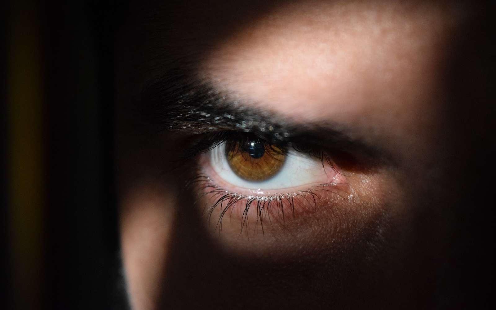 Le deepfake est désormais utilisé par les espions sur les réseaux sociaux. © Msporch, Pixabay