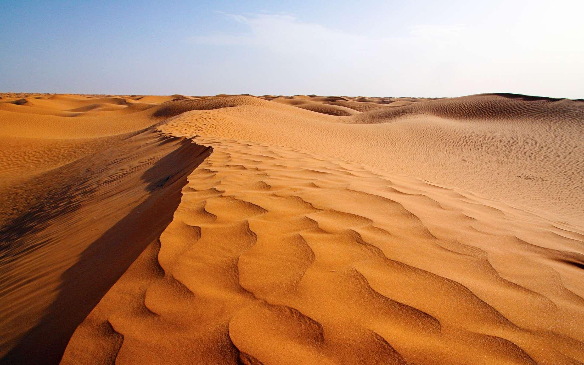 La pollution est partout. Ici le désert du Sahara, dans le sud tunisien. © Phil_Good, Adobe Stock