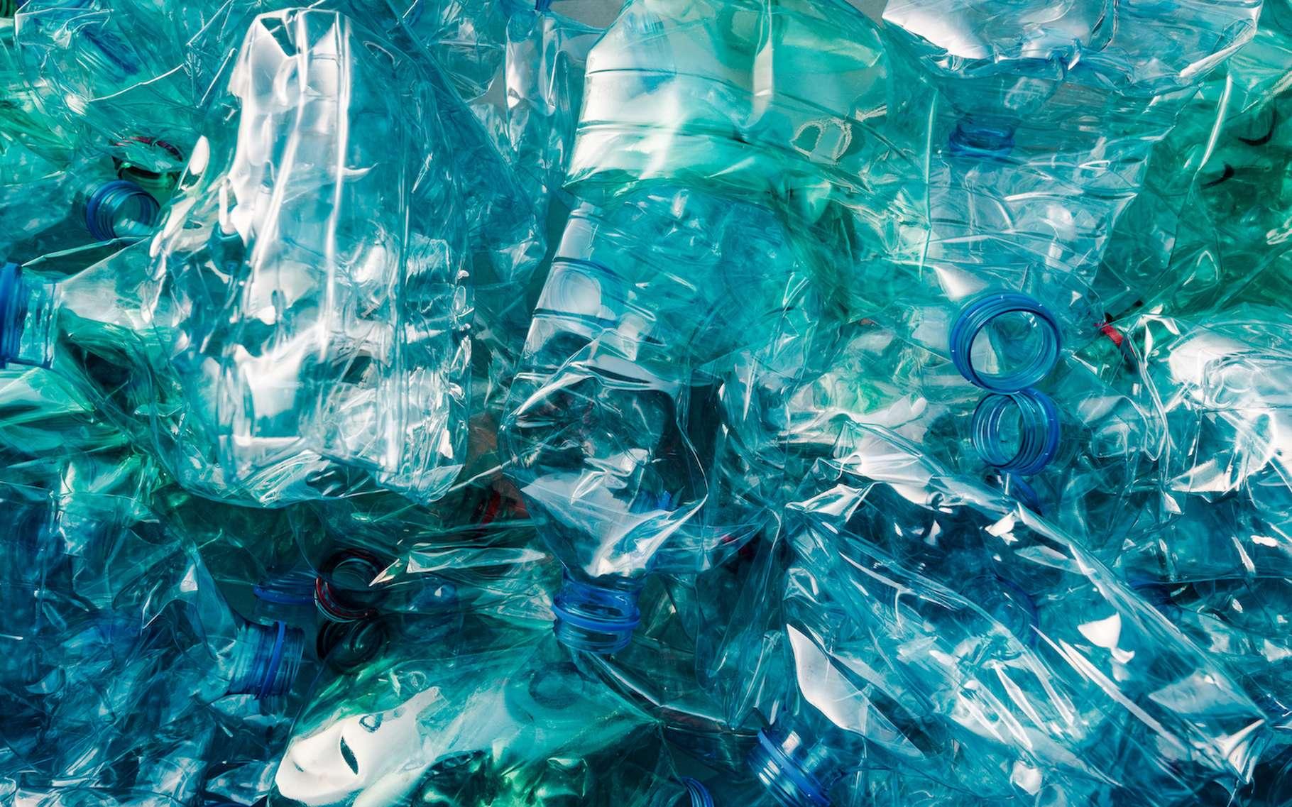 Chaque année, plus de 300.000 tonnes de bouteilles en plastique jetables sont produites en France. Mais des solutions arrivent sur le marché pour nous aider à adopter les habitudes de consommation plus responsables et plus saines. © Bits and Splits, Adobe Stock