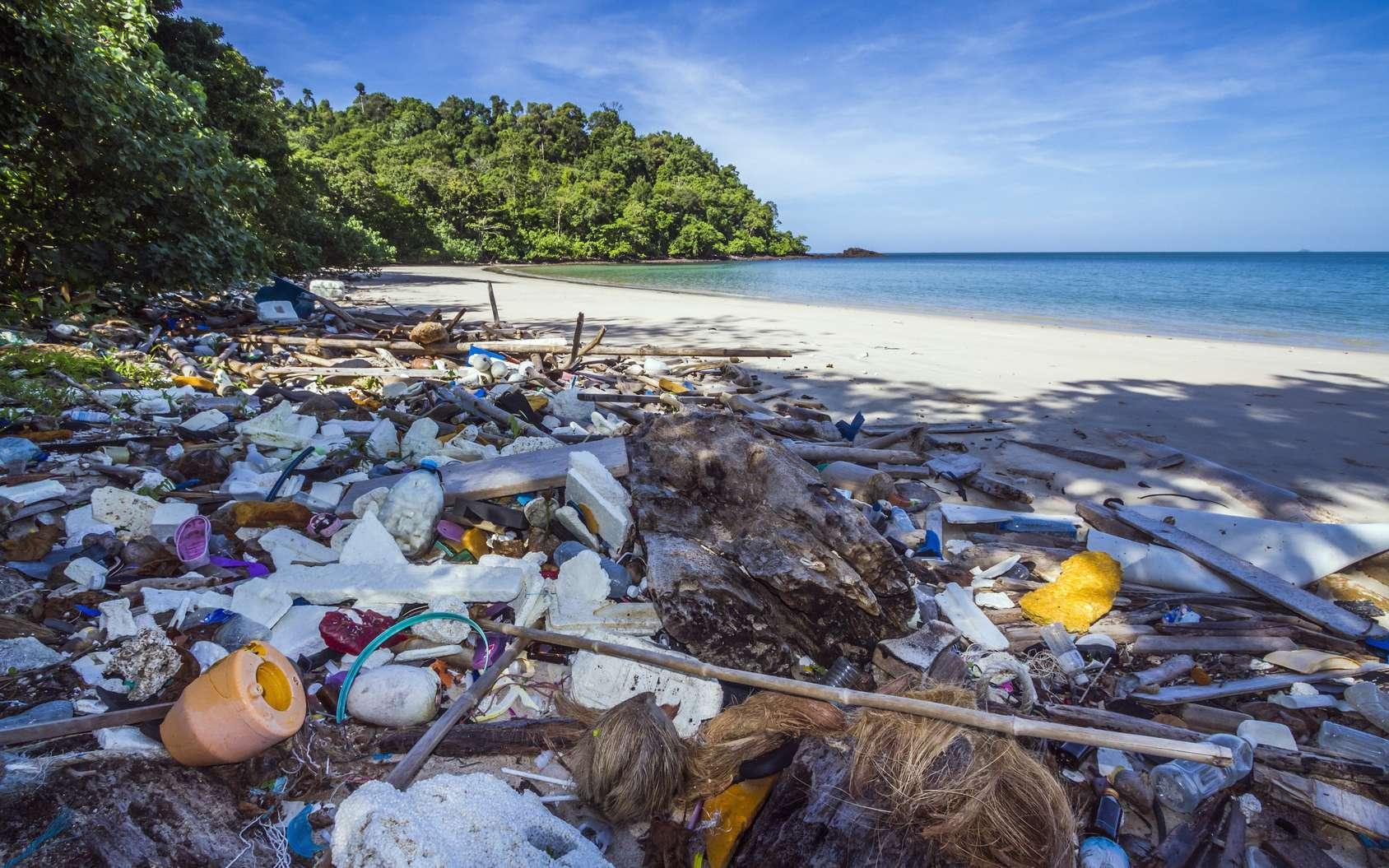 Les déchets plastiques des océans viennent beaucoup des navires marchands et des bateaux de pêche asiatiques. © Utopia, Fotolia