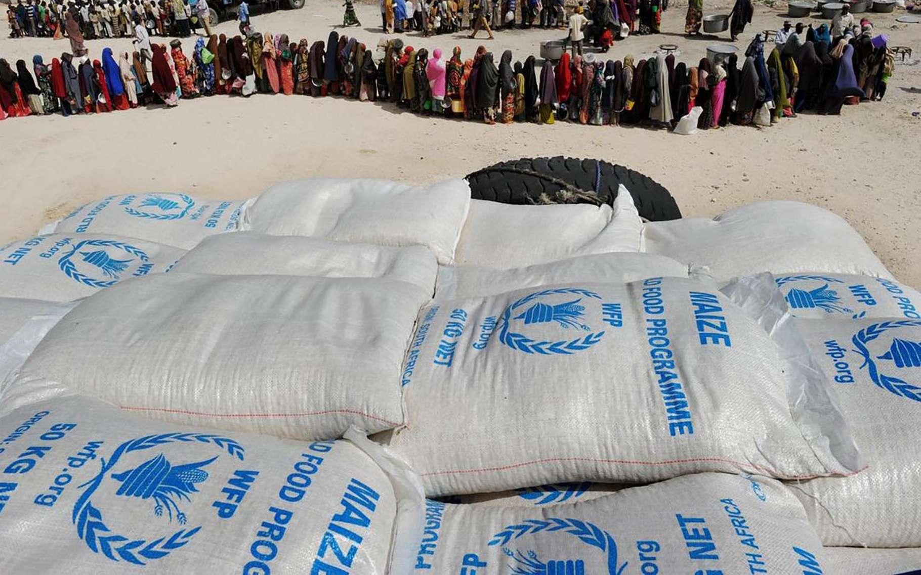 Le prix Nobel de la paix 2020 a été décerné ce 9 octobre, au Programme alimentaire mondial (PAM) des Nations unies. © WFP