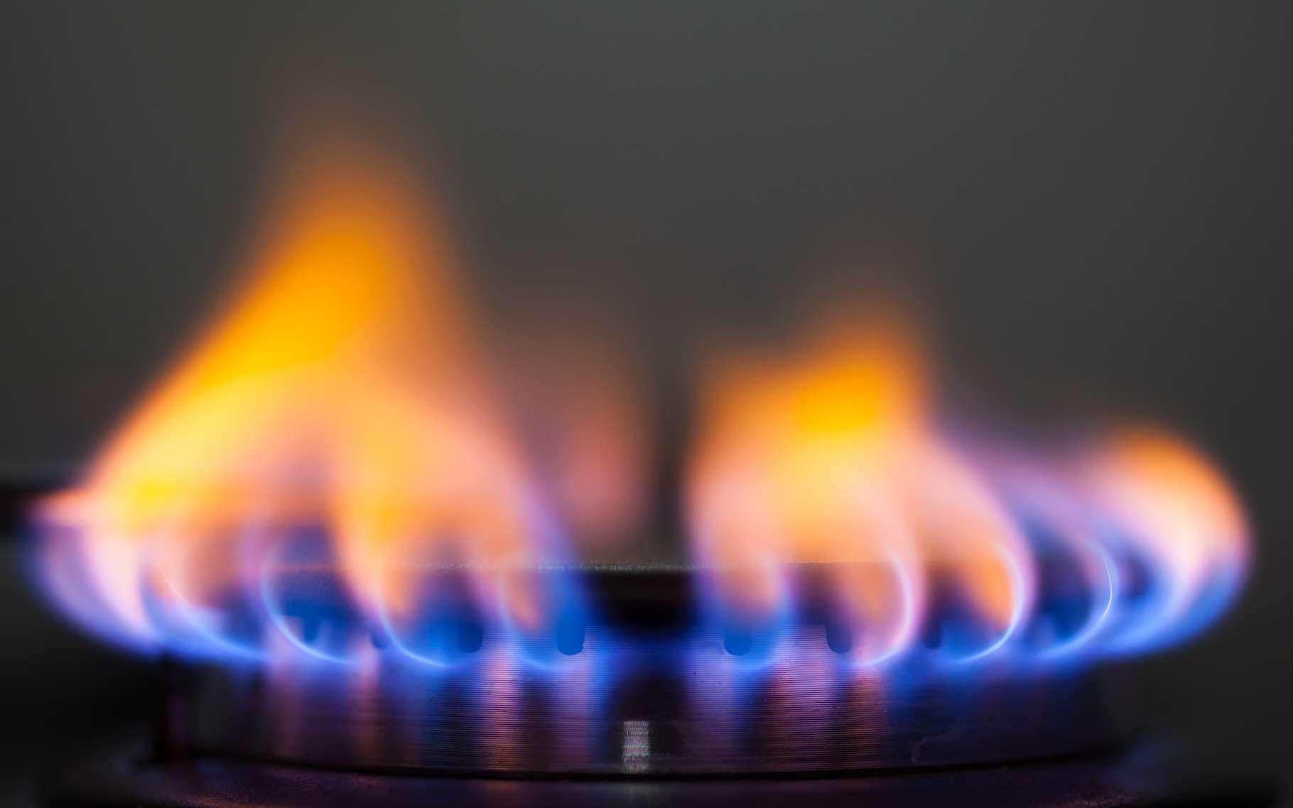 Le butane, un gaz utilisé comme combustible à usage domestique, existe sous deux formes isomères. © Nikkytok, Shutterstock