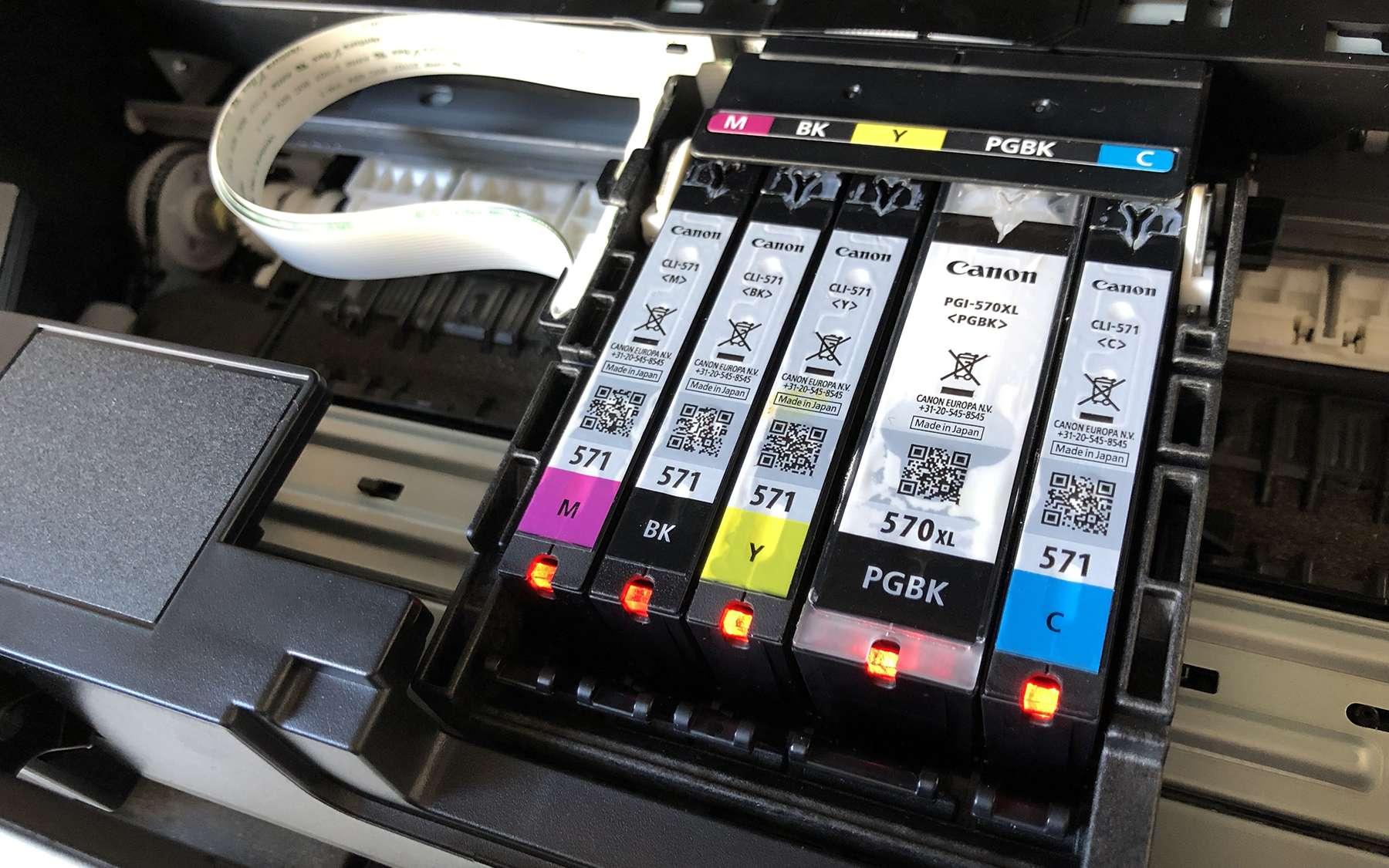 Cartouches d'imprimante Canon Pixma. © SR, Futura