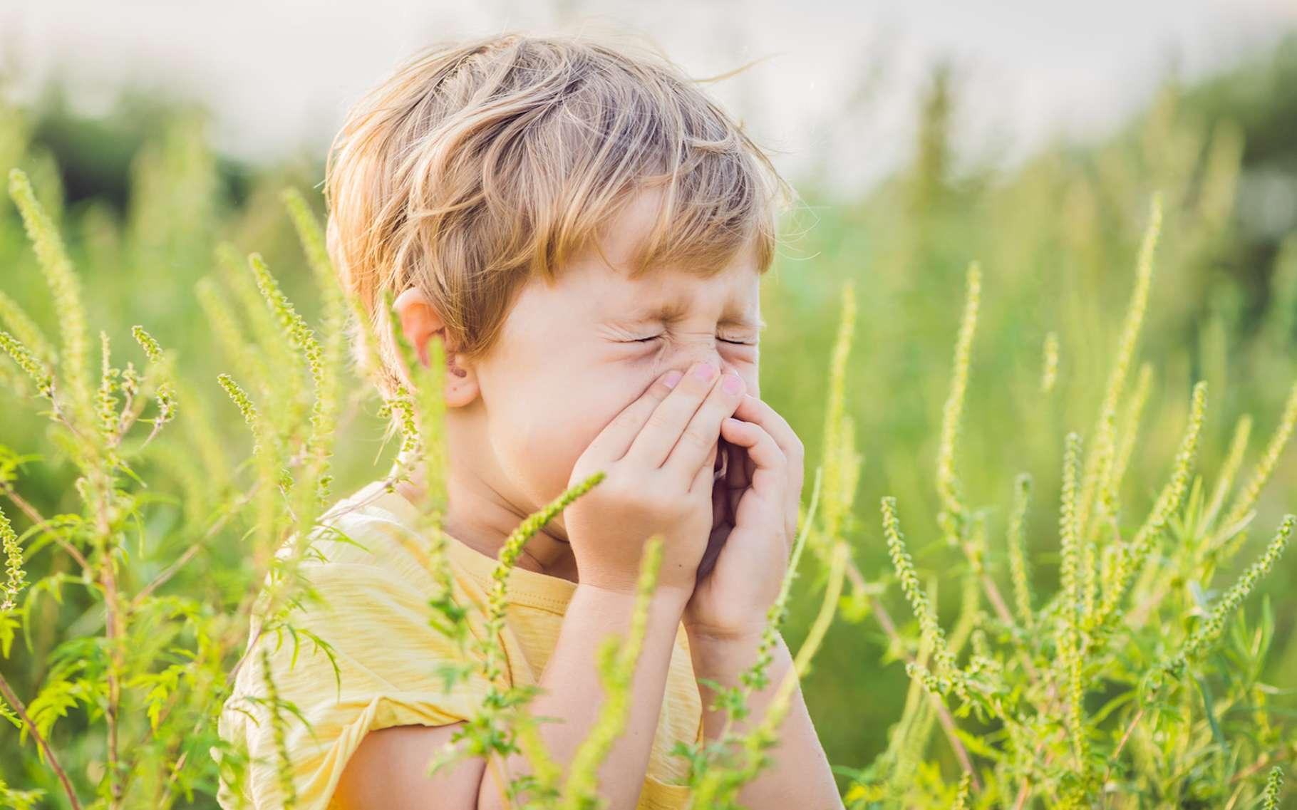 Selon l'Institut national de la santé et de la recherche médicale (Inserm), quelque 30 % des Français seraient aujourd'hui touchés par une allergie. Et ils seraient environ 300.000 à suivre un traitement de désensibilisation. © galitskaya, Fotolia