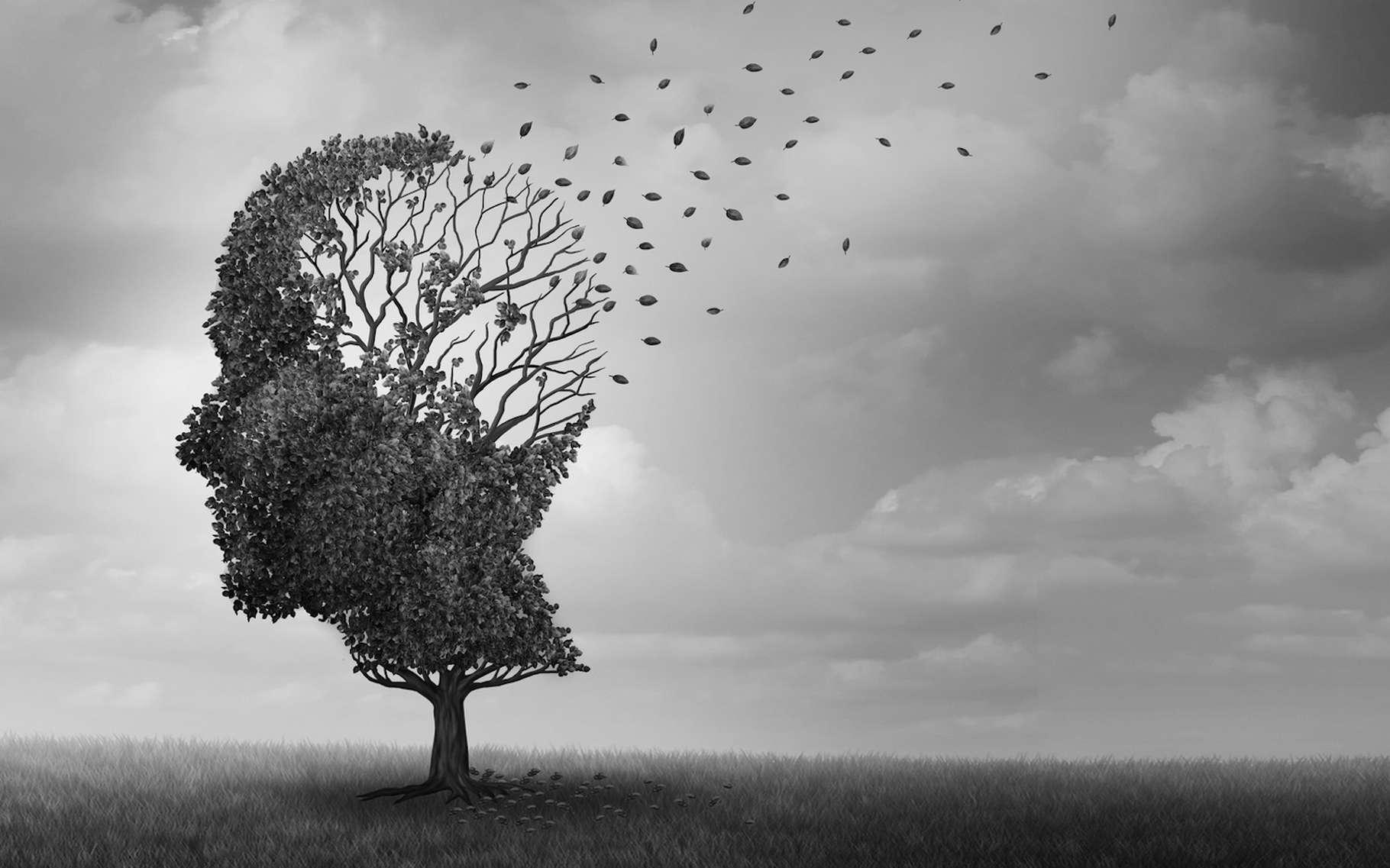 La maladie d'Azheimer touche une part grandissante de la population vieillissante. De récentes preuves suggèrent que la dysrégulation épigénétique qui conduit à des modifications de l'expression génique spécifique à la région cérébrale constitue l'une des bases physiopathologiques de cette neurodégénérescence. Des chercheurs ont exploré cette piste et obtenu des résultats encourageants. © freshidea, Fotolia