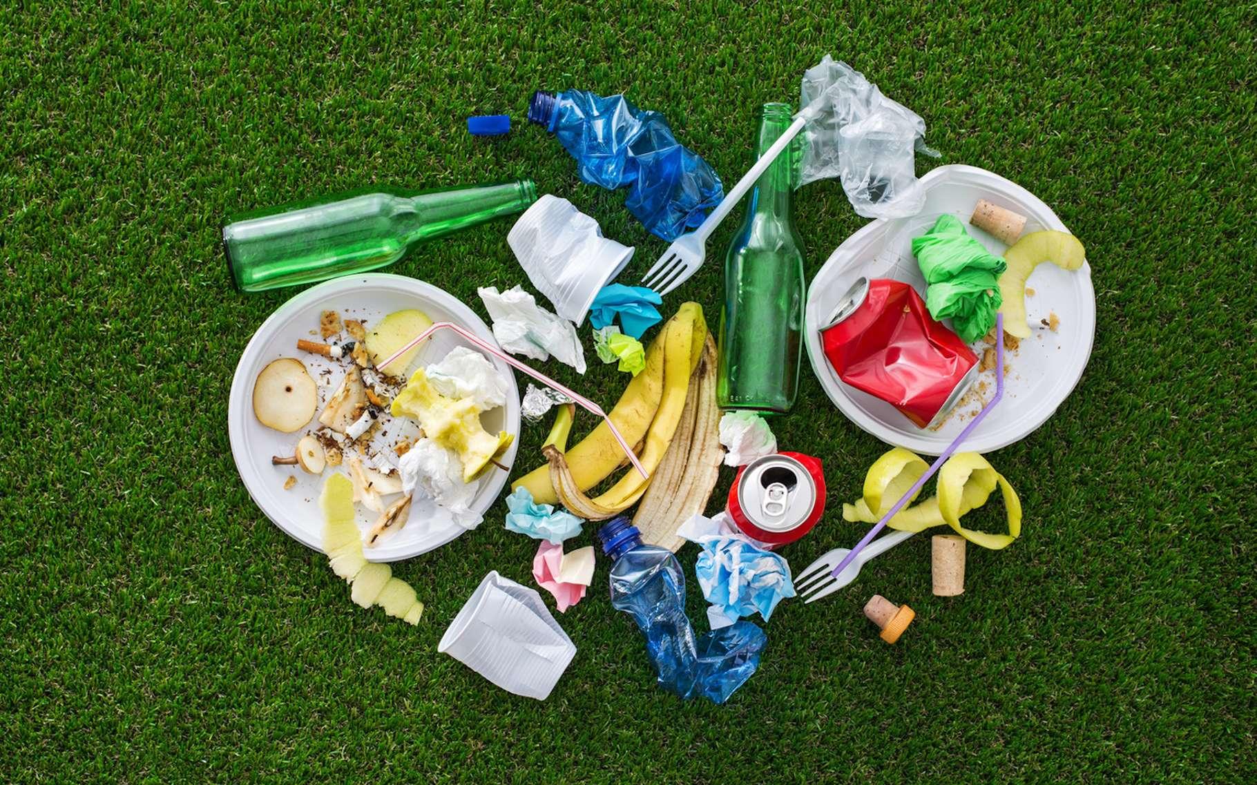 Parmi les déchets que l'on trouve dans une poubelle, certains sont biodégradables, d'autres compostables et d'autres enfin, recyclables. © StockPhotoPro, Fotolia