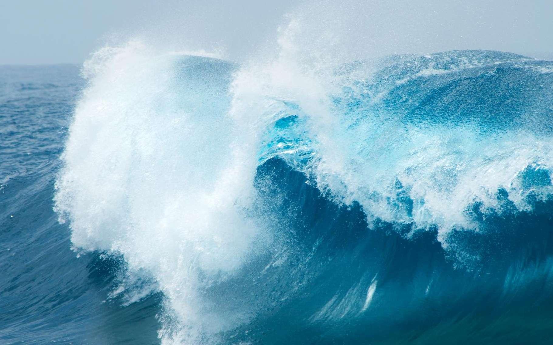 La température de surface de la mer est difficile à mesurer. L'estimer à l'échelle de l'océan mondial est une affaire complexe, exigeant de prendre en compte les caractéristiques des instruments utilisés (satellites, balises plongeantes, bateaux...). © Tamara Kulikova, Shutterstock