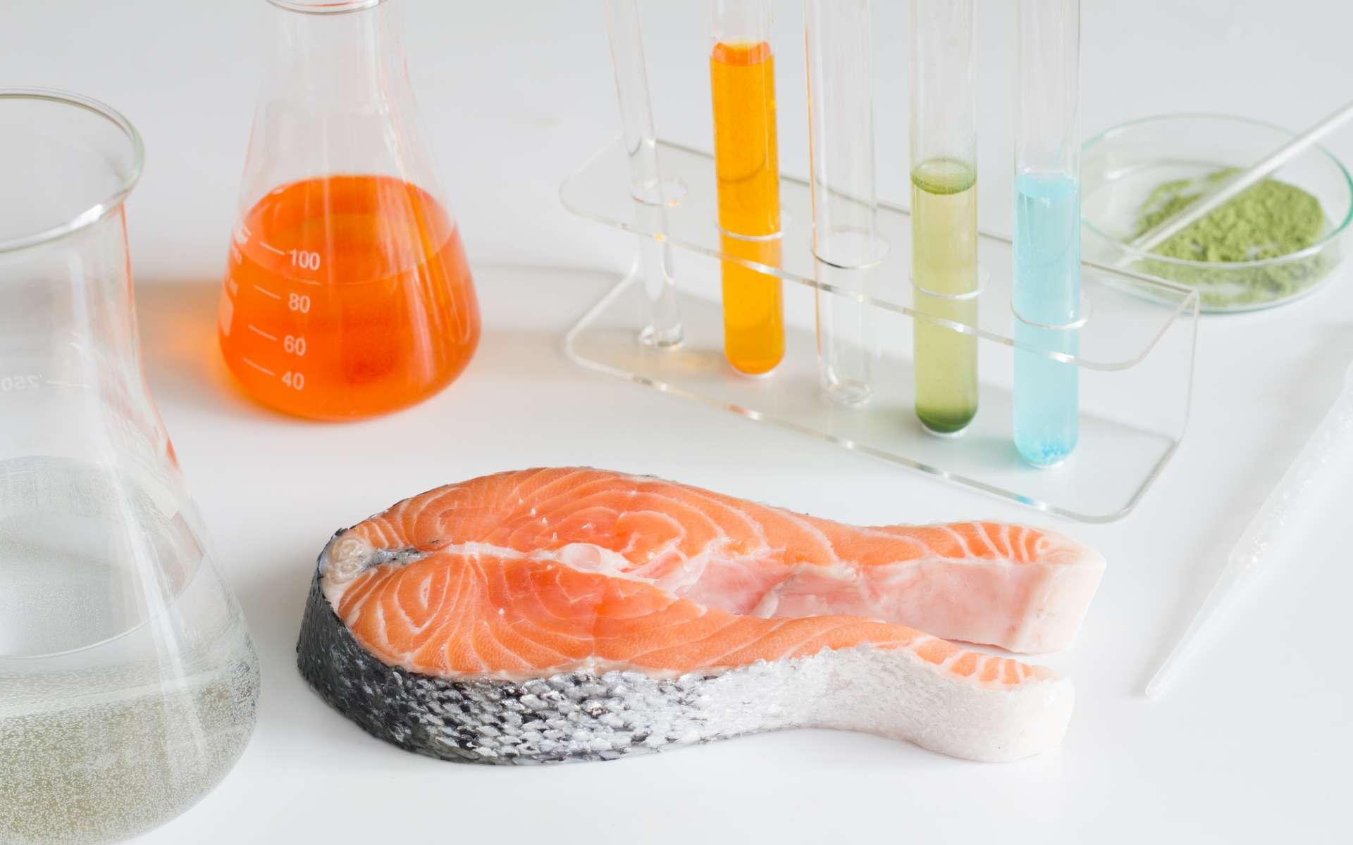 Peut-on encore manger du poisson alors que l'océan se charge de plus en plus en métaux lourd ? © udra11, Adobe Stock