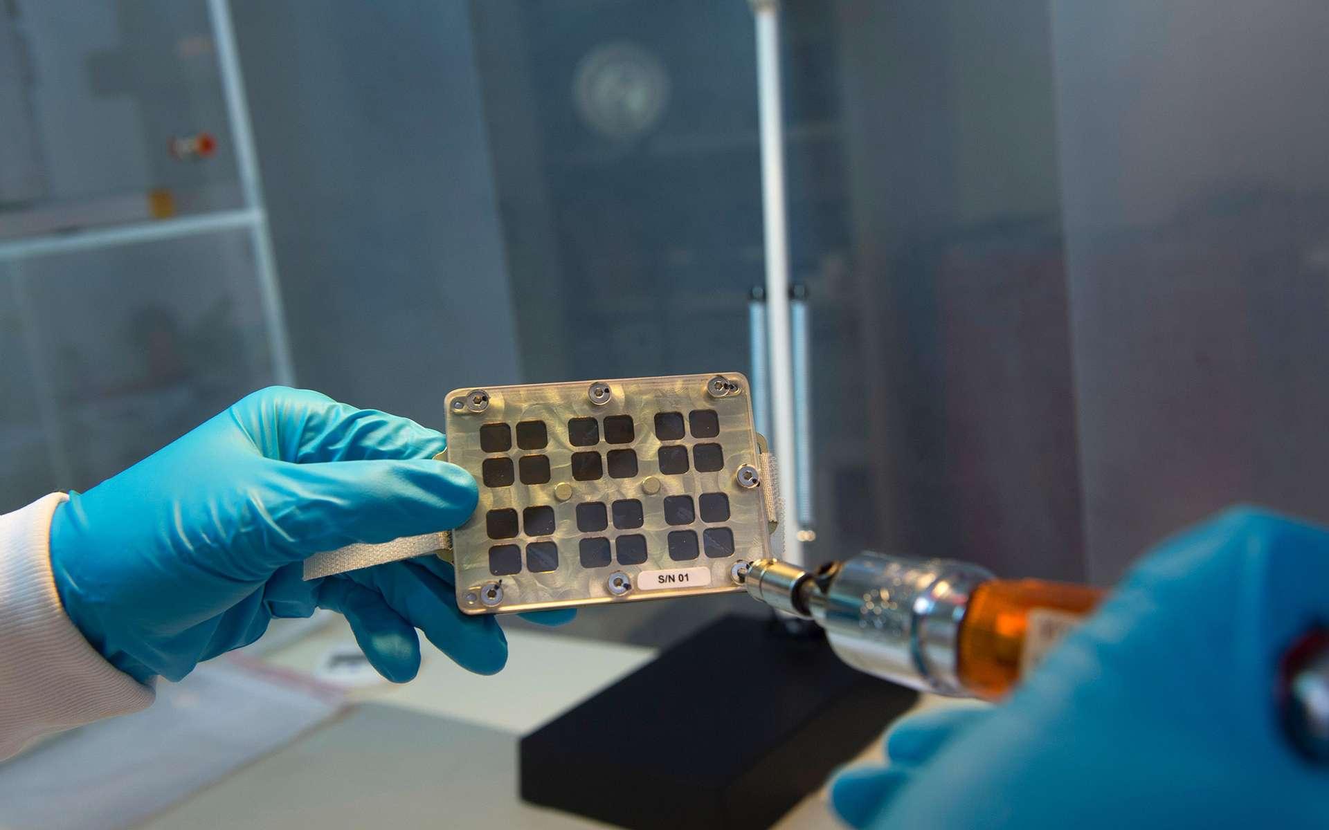 Préparation de l'un des quatre porte-échantillons Matiss contenant chacun cinq surfaces superhydrophobes et une surface témoin. © Emmanuel Grimault, Cnes