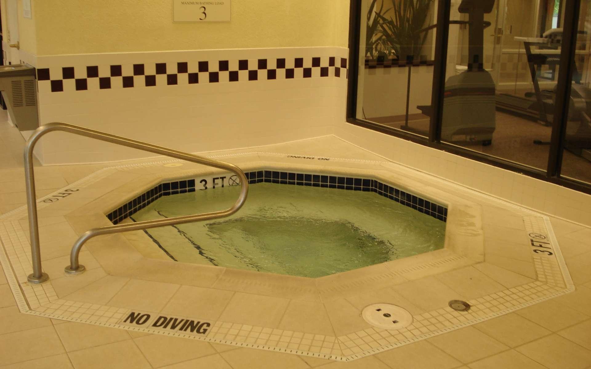 Un Jacuzzi encastré, dans un hôtel. © DR, CC BY-NC-SA 3.0, http://capl.washjeff.edu