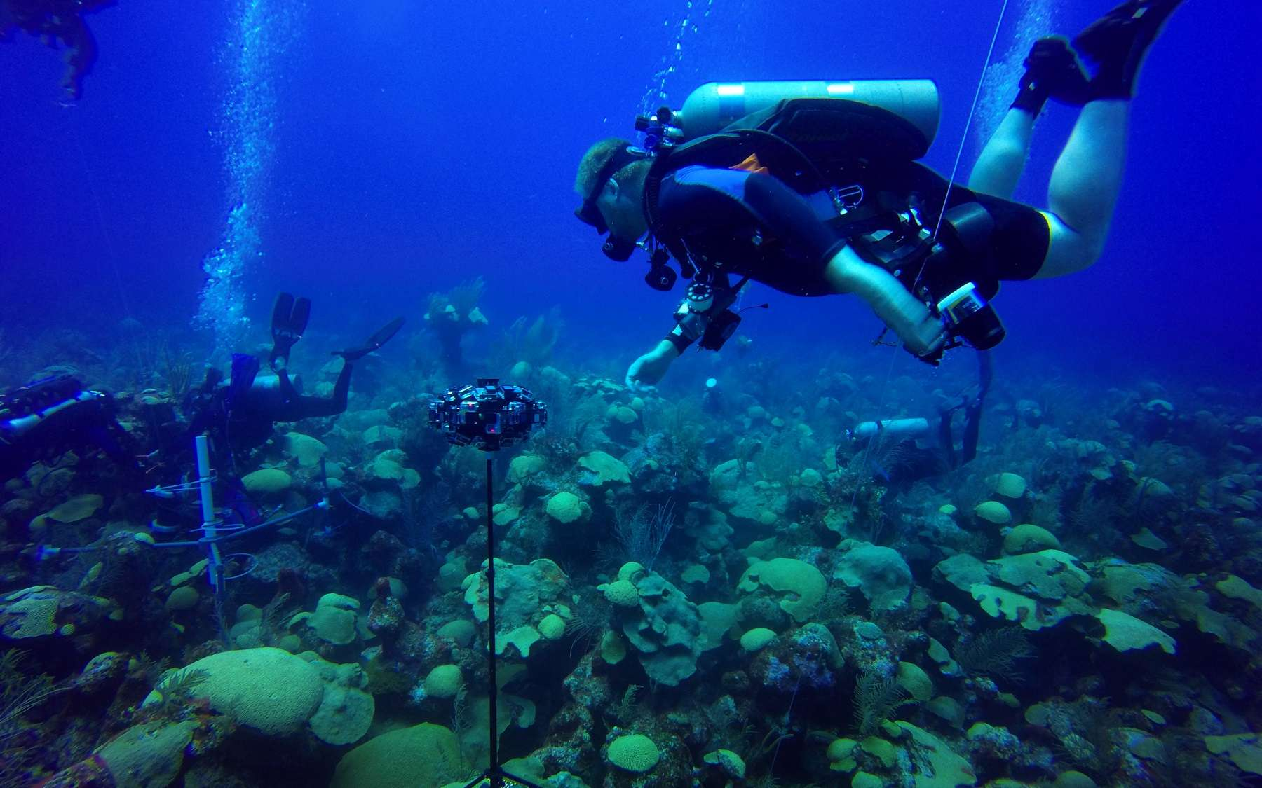 Une équipe de plongeurs étudie les fonds sous-marins. © Nekton 2018