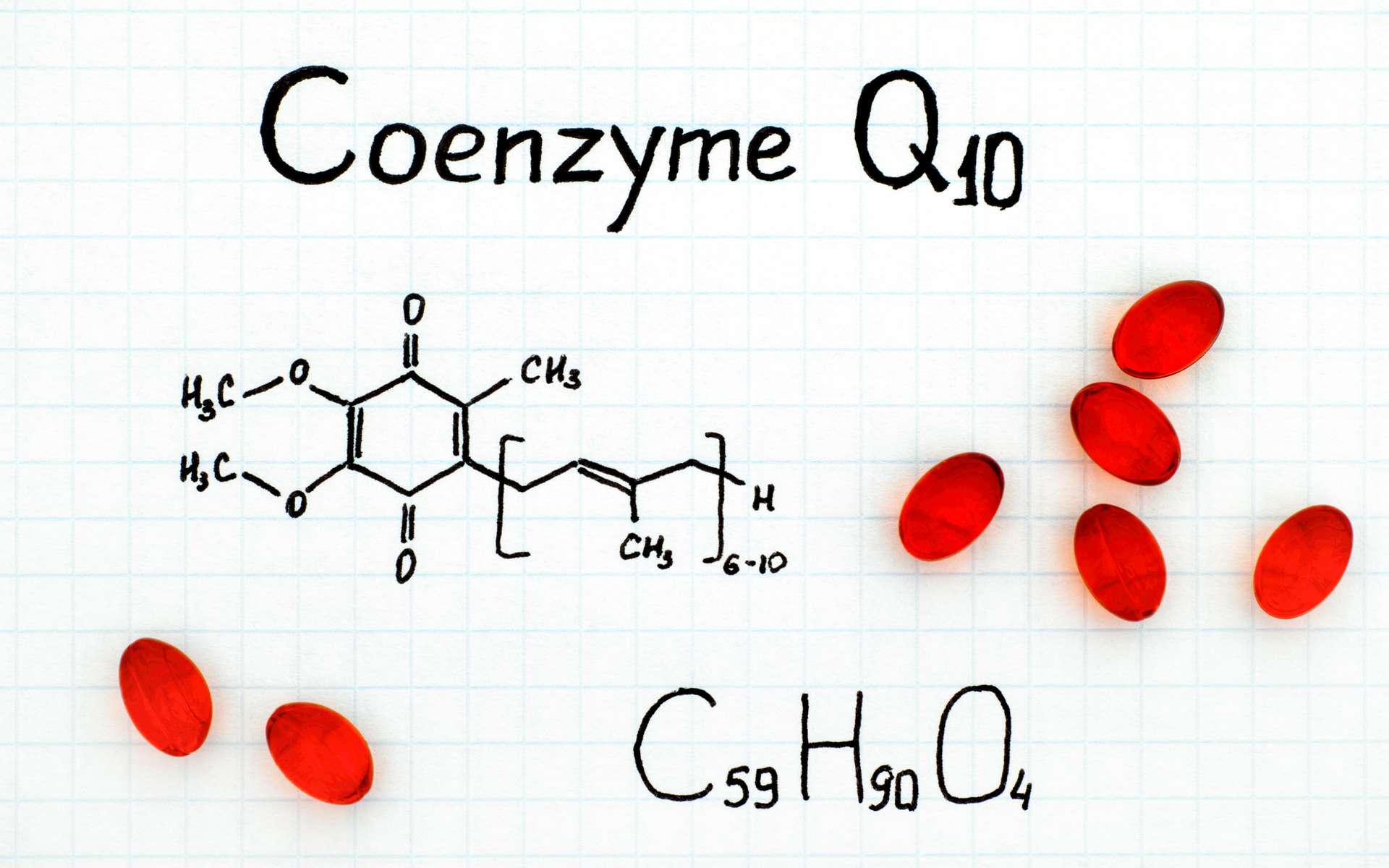 La coenzyme Q10 ou ubiquinol a été découverte quasi-simultanément en 1955 puis en 1957 par deux chercheurs britanniques. © rosinka79, adobestock