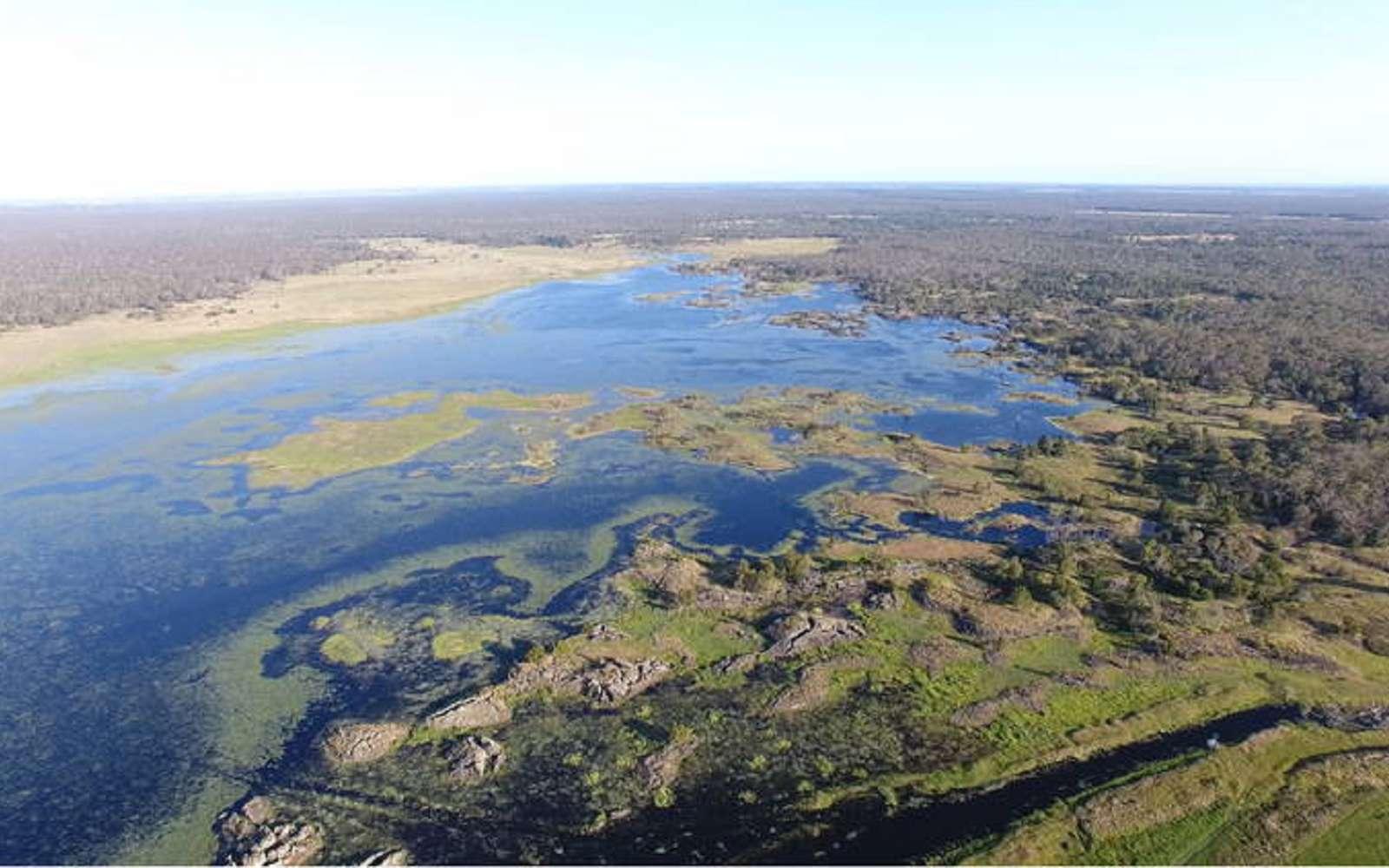 Le réseau de canaux Budj Bim, conçu par les Gunditjmara il y a plus de 6.600 ans © Gunditj Mirring Traditional Owners Aboriginal Corporation