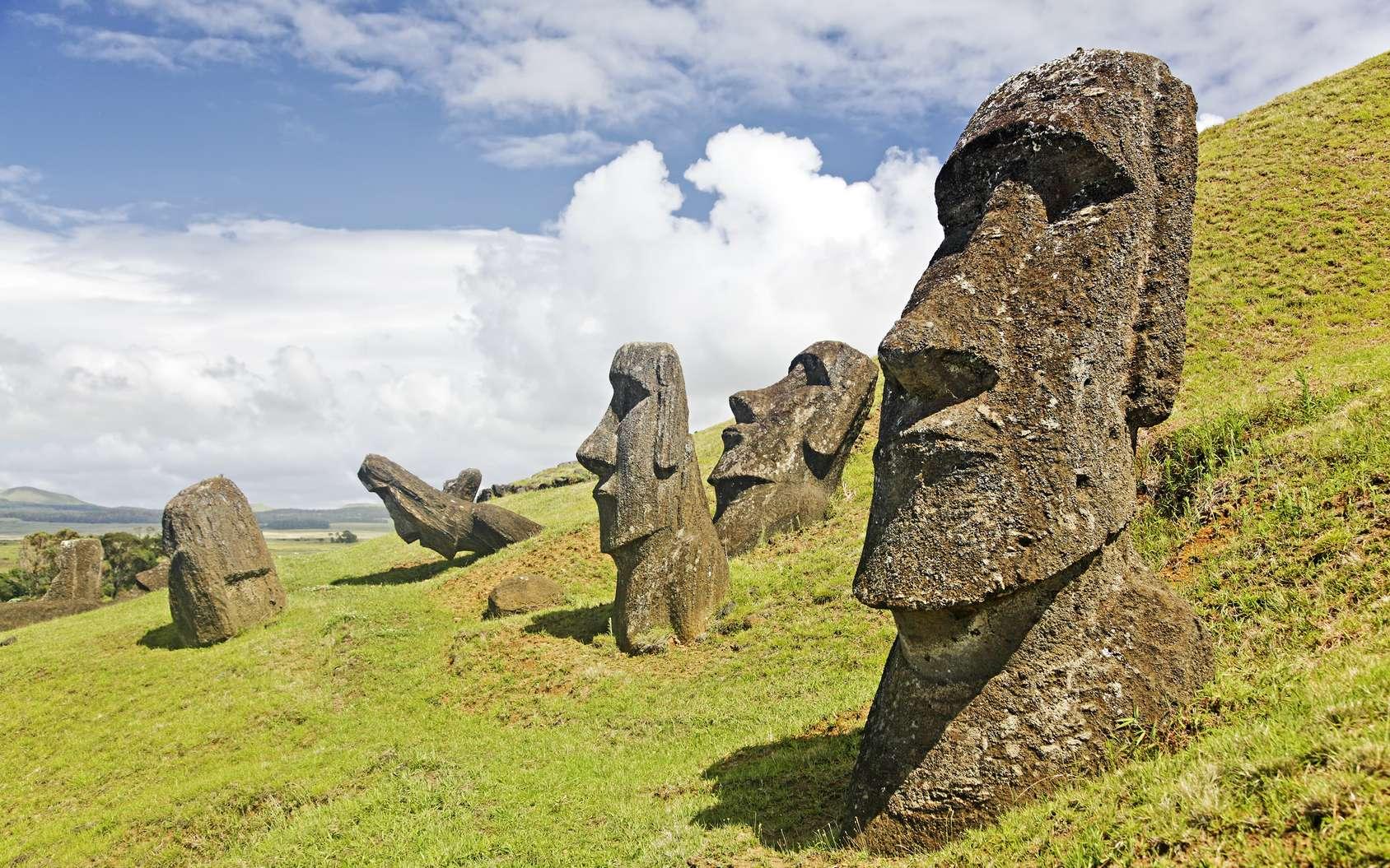 Une des statues de l'Ile de Pâques. © Bryan Busovicki, fotolia