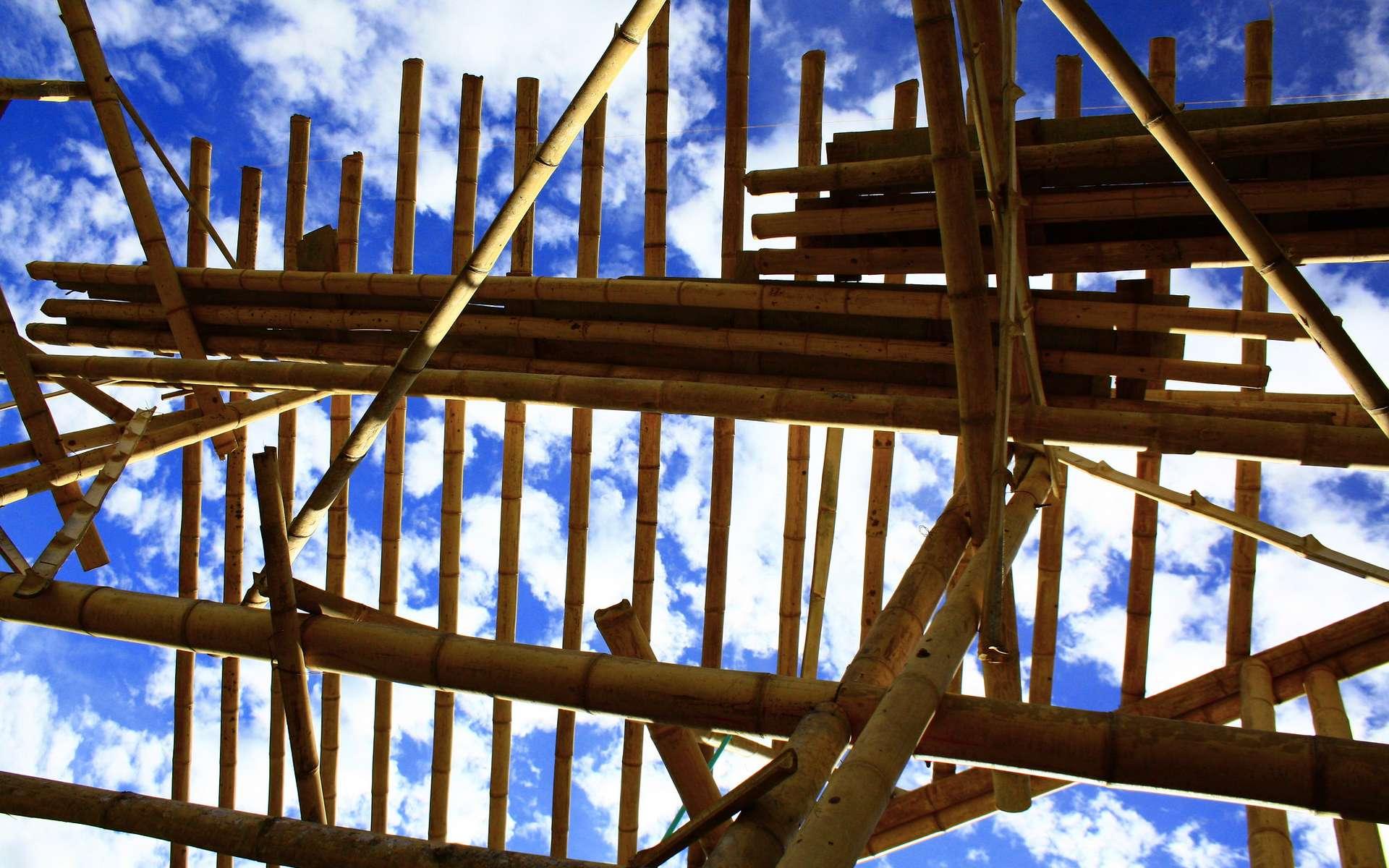 Le bambou est traditionnellement utilisé comme matériau de construction en Asie. © Carolina Zuluaga, Flickr