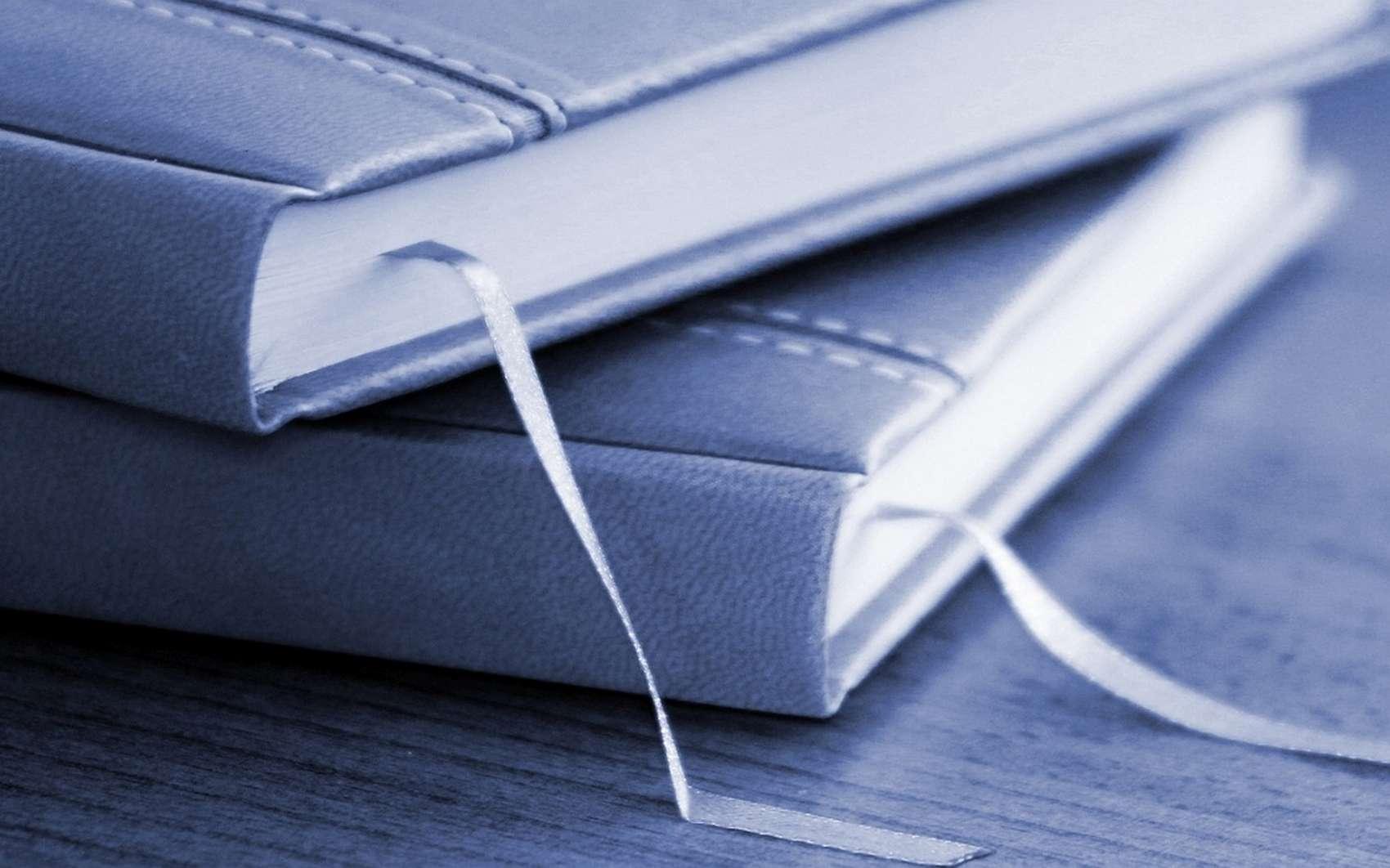 Les bookmarks sont des marque-pages pour les navigateurs internet © vargasz by Pixabay
