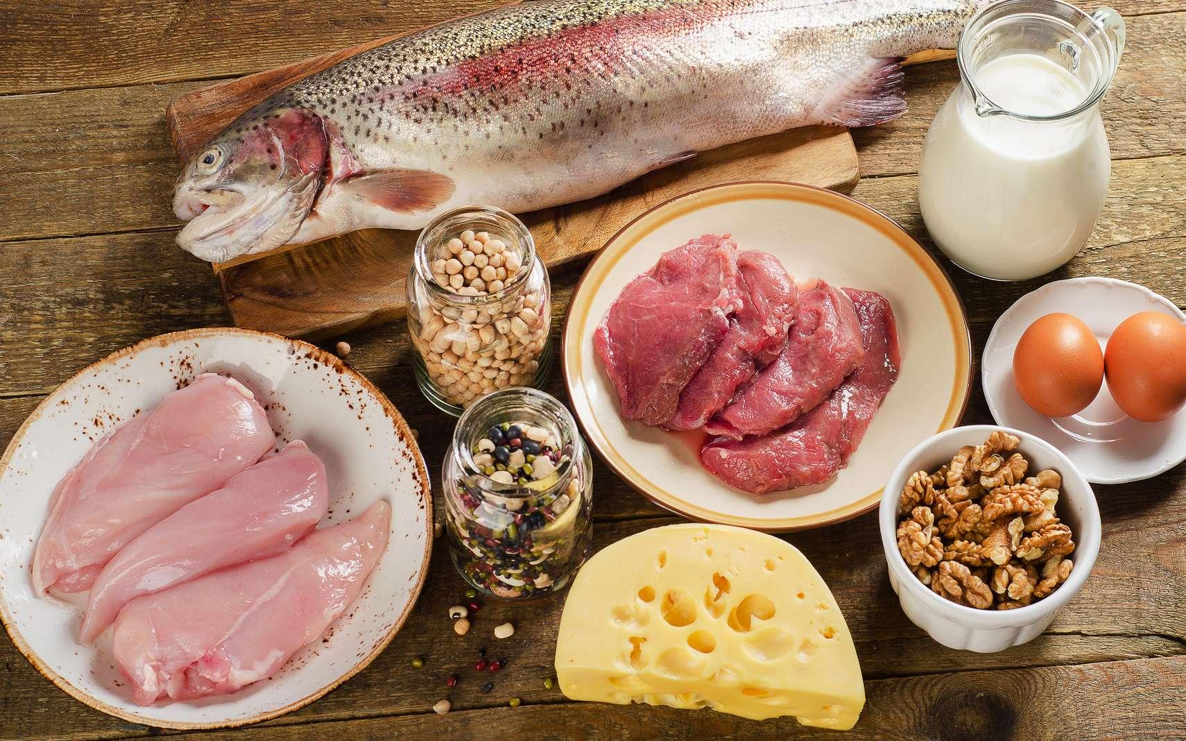 Quels aliments contiennent le plus de protéines ? Le fromage, la viande rouge, la viande blanche, le poisson, les légumineuses ? © bit24, fotolia