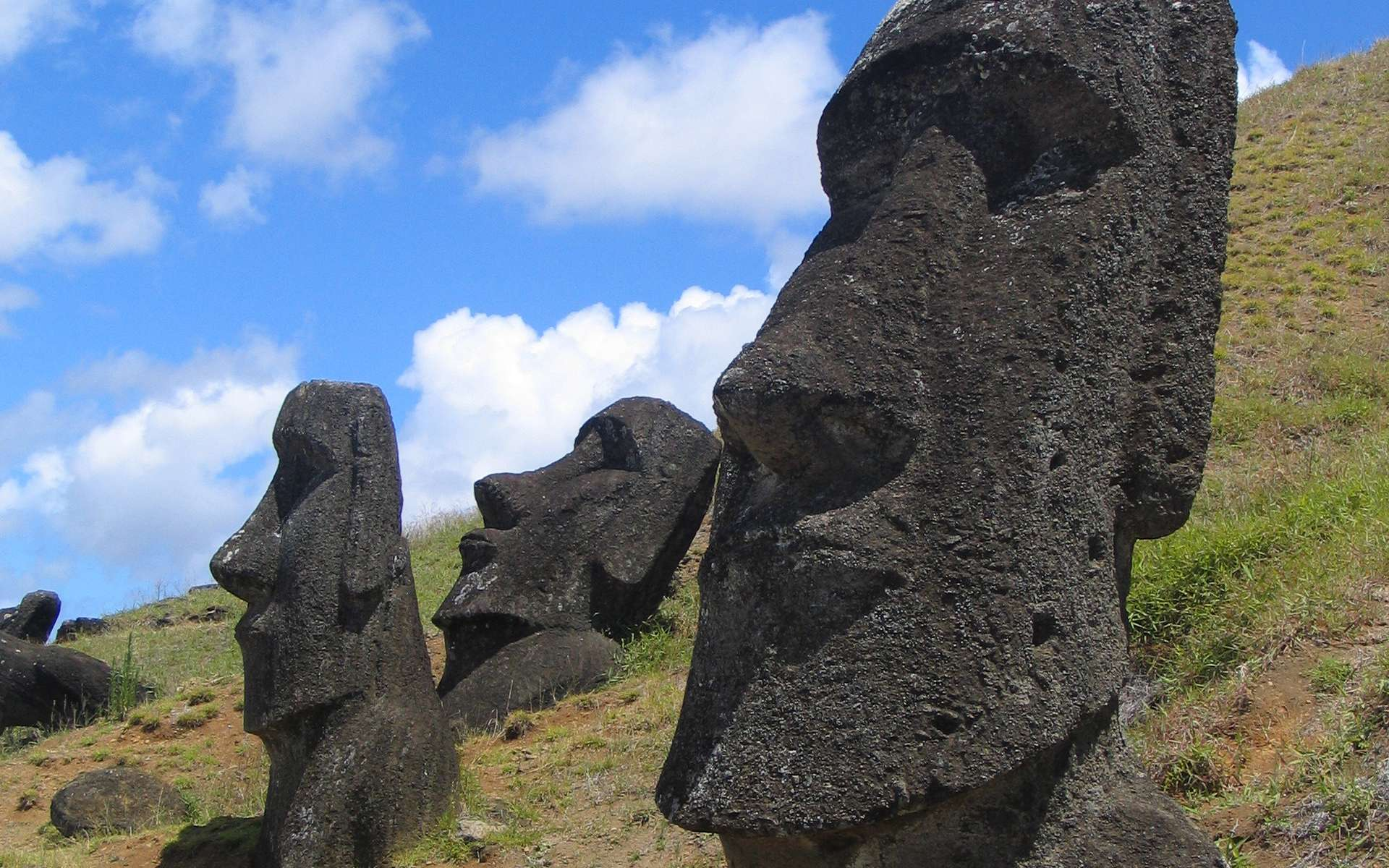 La terre des moais, les géants de pierre de Rapa Nui, cache-t-elle le secret de la longévité ? © Commons