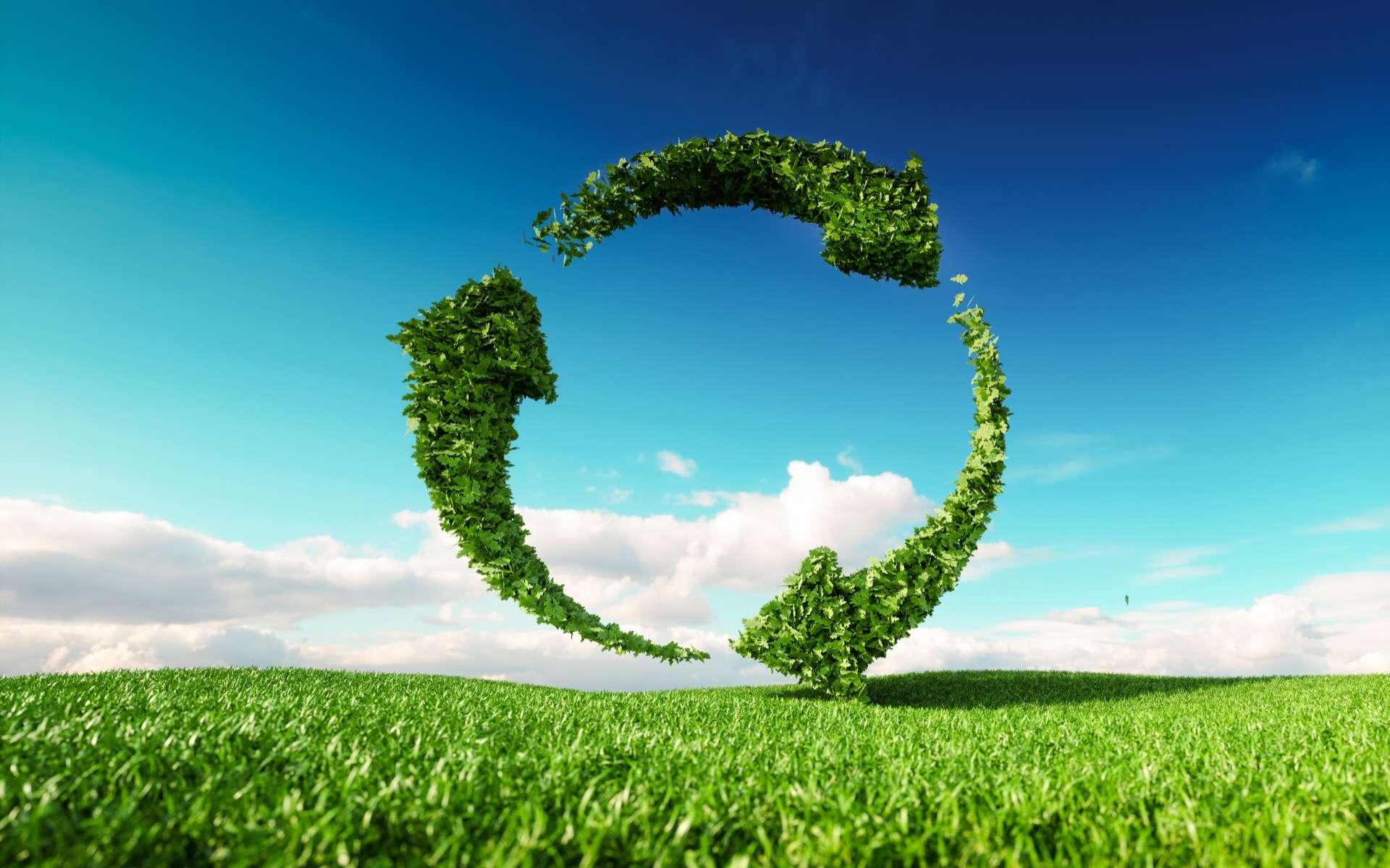 Réutiliser, réemployer et recycler sont les maîtres-mots de la loi anti-gaspillage et de l'économie circulaire. © Malp, Adobe Stock