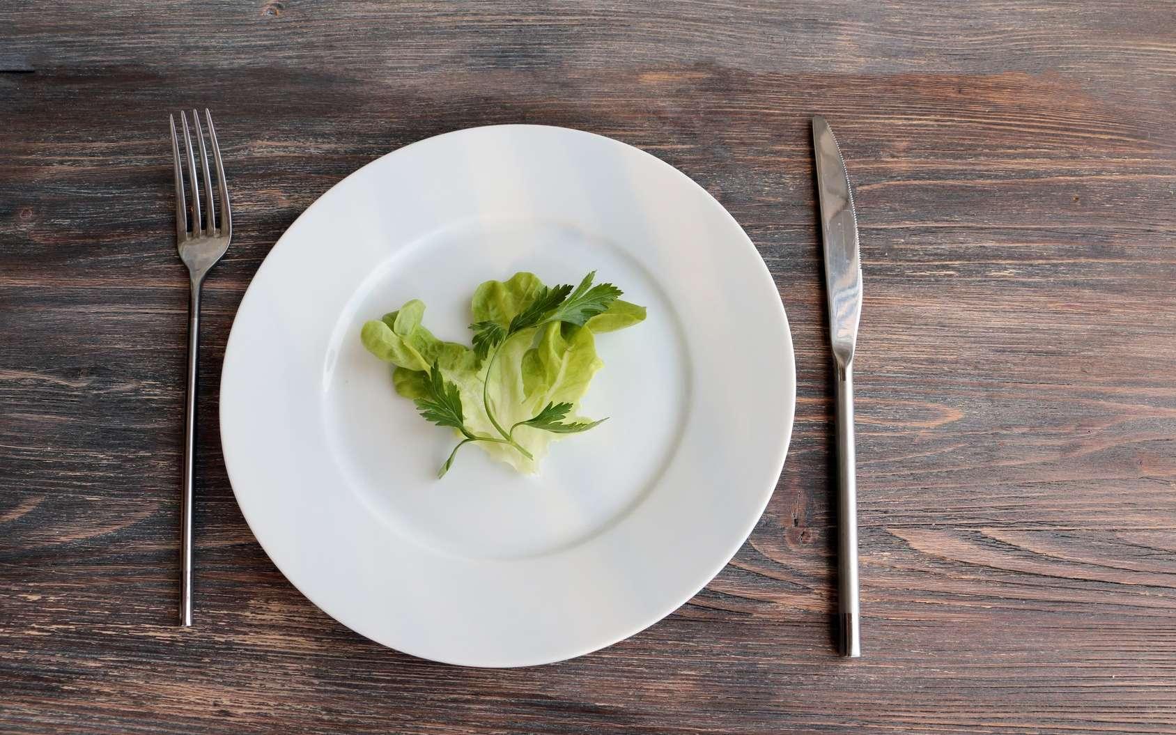 Moins de calories pour vivre plus longtemps ? Bon appétit ! © Studio Dagdagaz, Fotolia