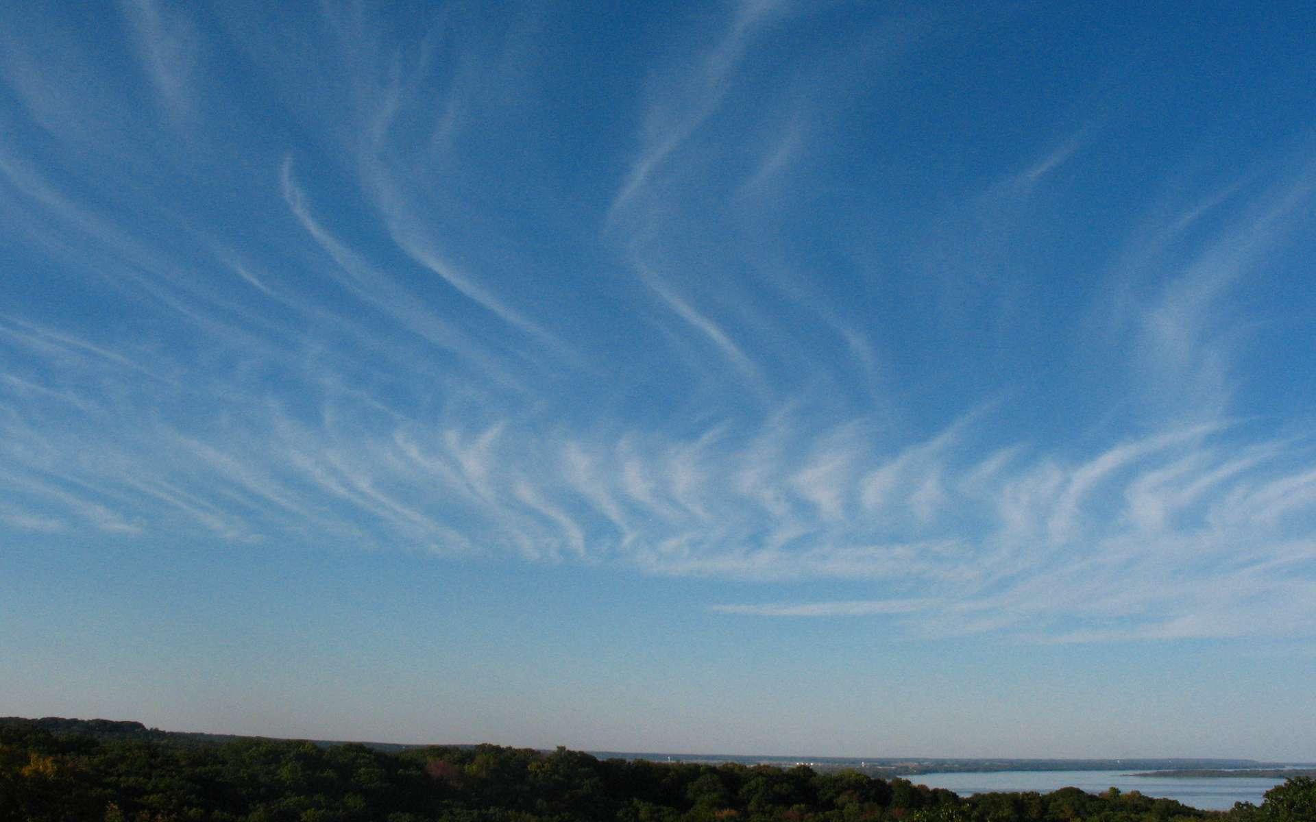 Les cirrus forment des nuages filamenteux de haute altitude. © k4dordy, Fotopedia, CC by 2.0