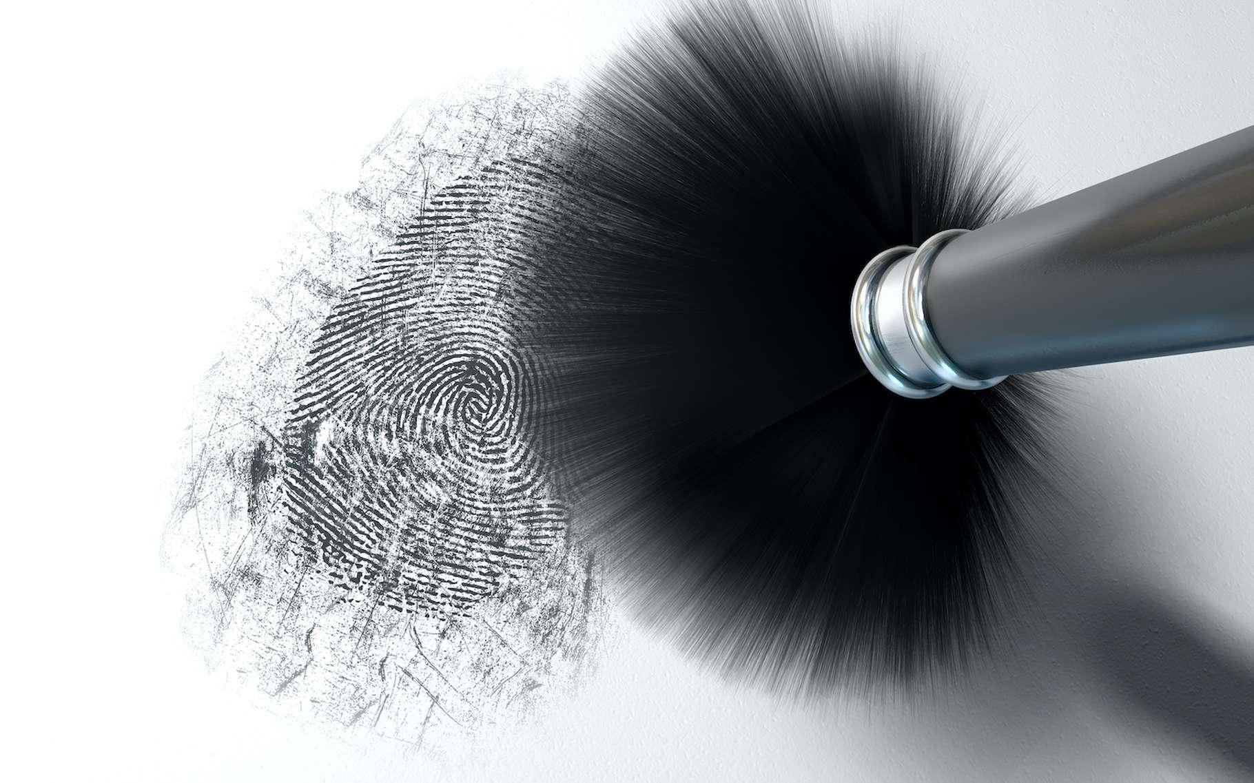 Les empreintes digitales, ces traces laissées par les dessins de nos pulpes papillaires, sont utilisées à des fins d'identification. © aswart, Adobe Stock