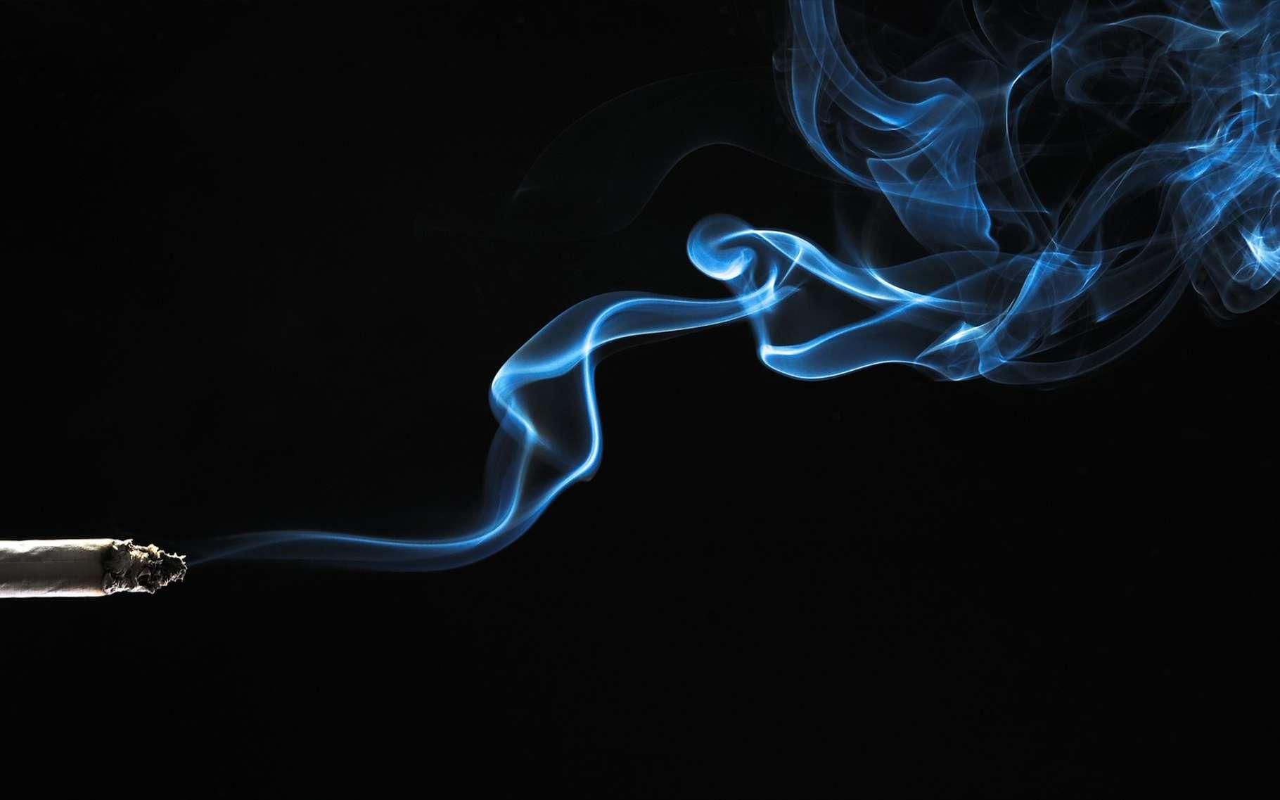 La machine fume comme un humain des cigarettes normales ou électroniques. © Fotokon, Shutterstock