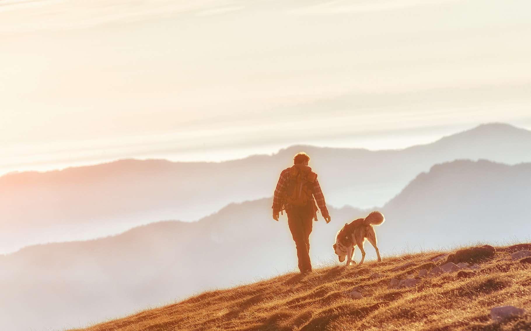 Un fragment d'os de chien permet aux chercheurs de montrer que les premiers Hommes sont arrivés aux Amériques bien avant ce qu'ils pensaient. © michelangeloop, Adobe Stock