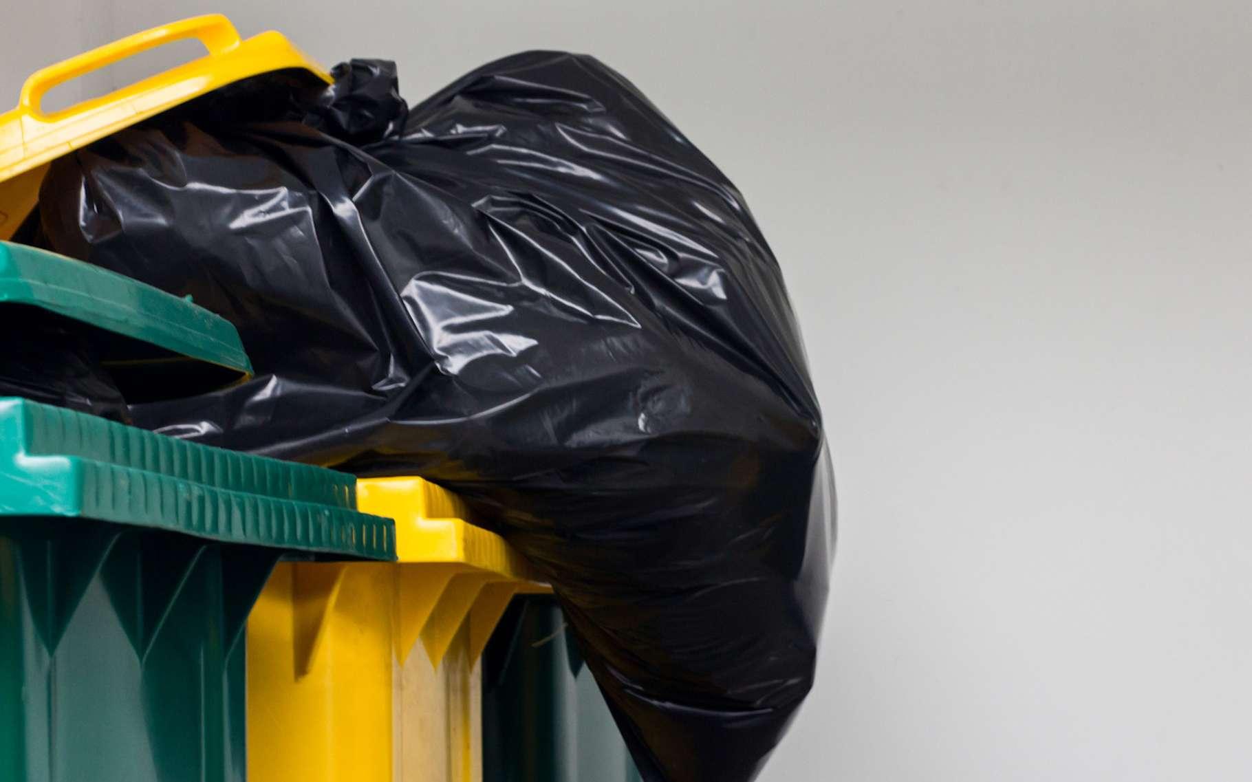 Le terme déchet ménager regroupe tous les déchets que nous produisons au quotidien, qu'ils soient recyclables, valorisables ou non. © worawut17, Fotolia