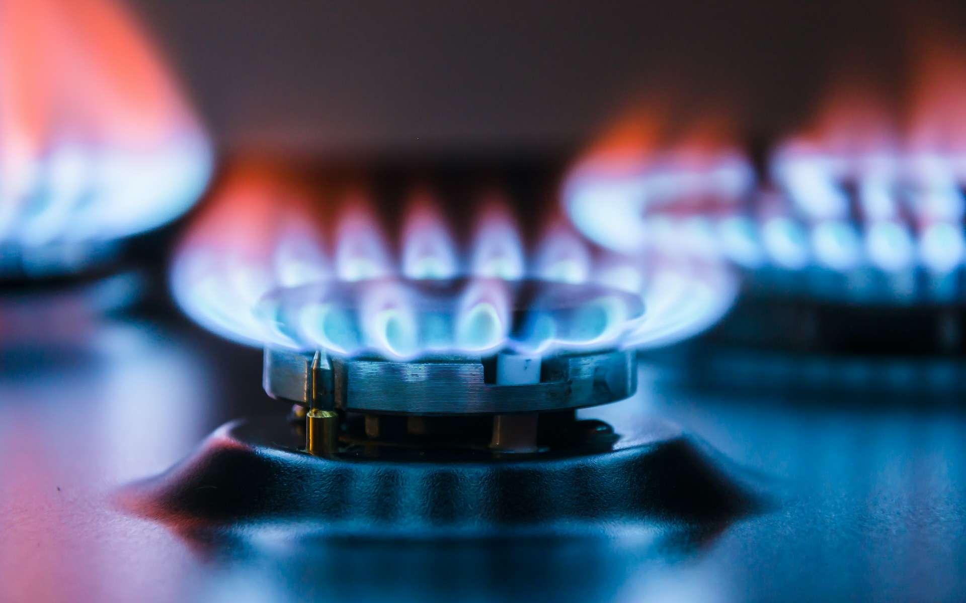 D'où vient l'odeur de gaz censée signaler une fuite ? © Valerii, Adobe Stock