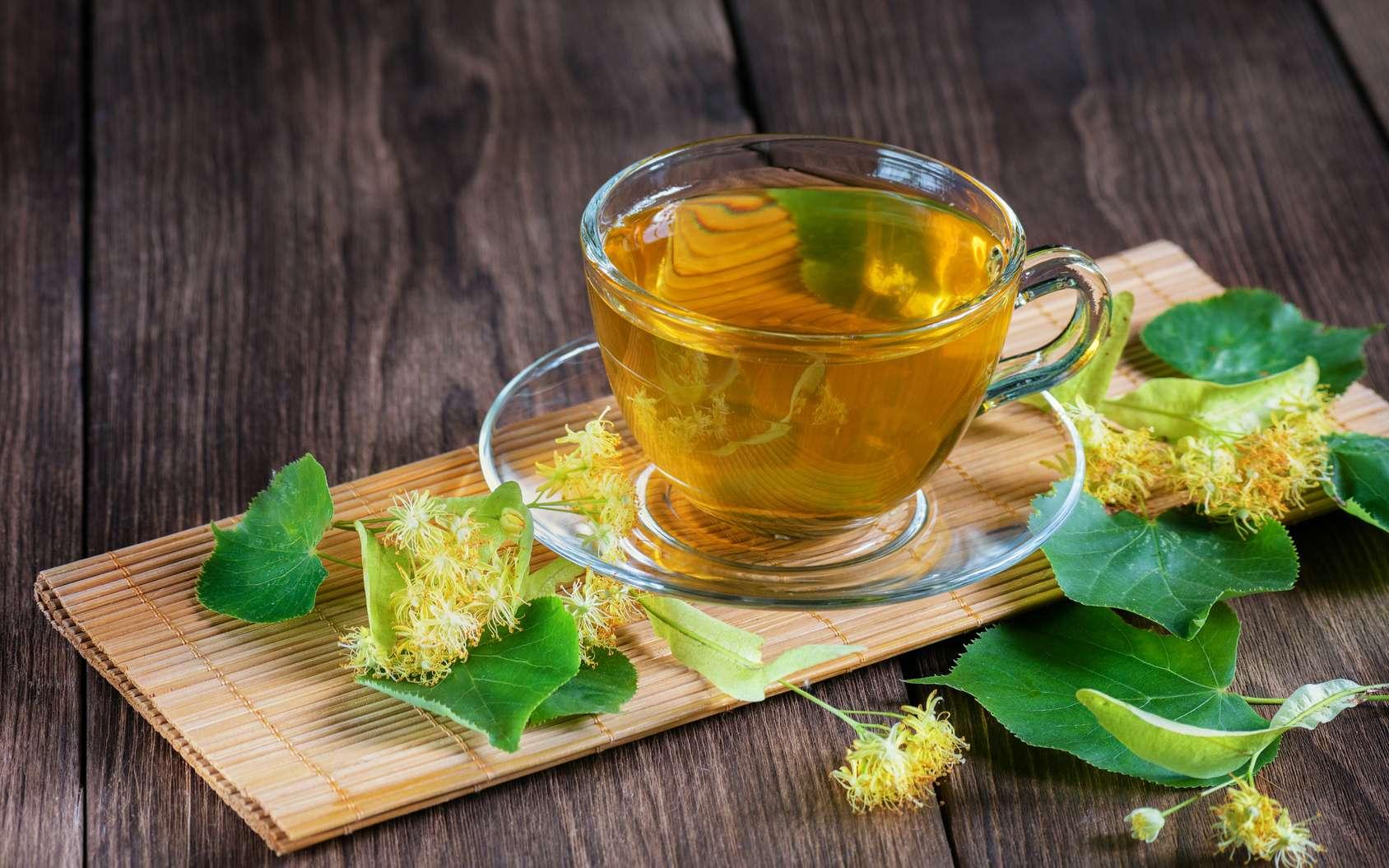 La combinaison d'un polyphénol extrait des feuilles de thé vert et de l'antibiotique aztréonam serait plus efficace pour traiter des infections bactériennes graves, voire mortelles. © Андрей Прилуцкий/Fotolia