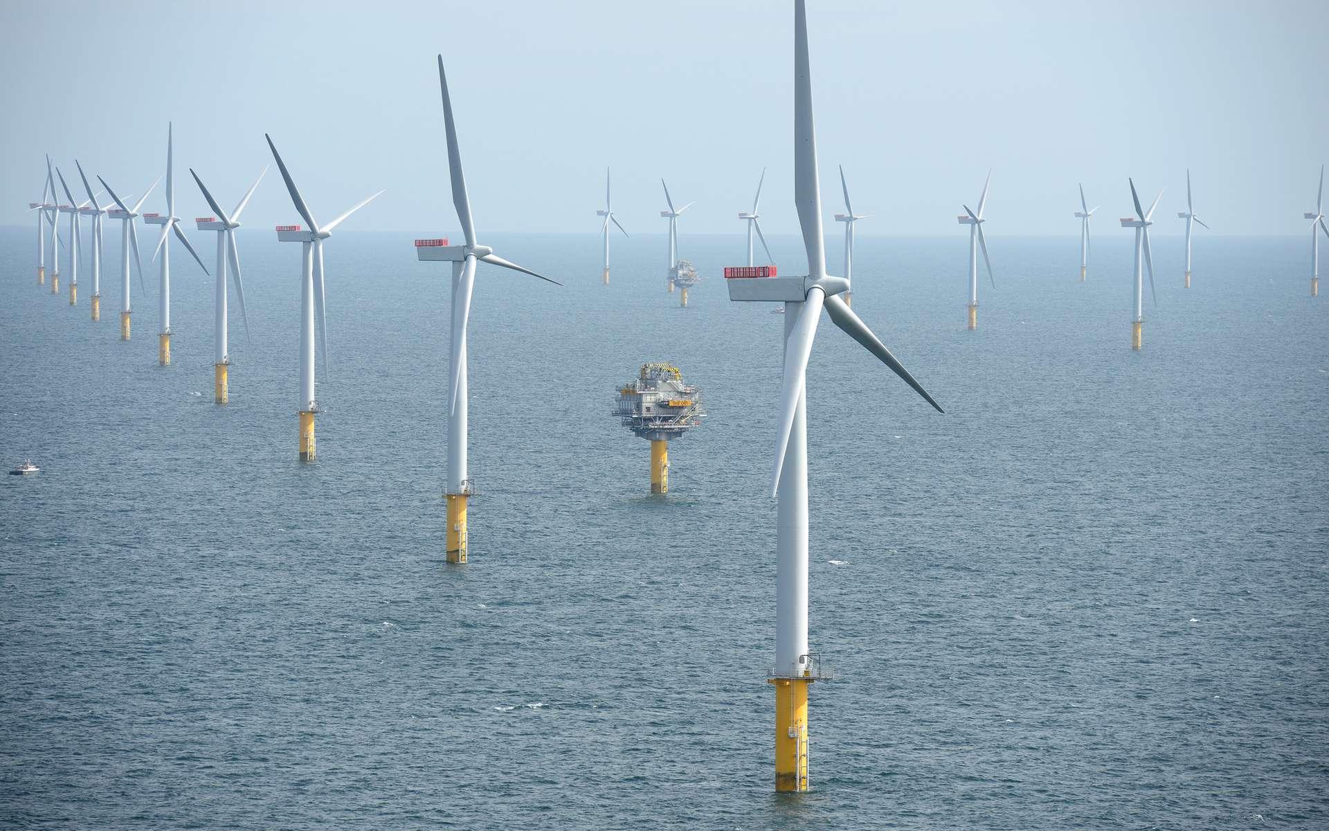Le parc éolien de Sheringham Shoal, en mer du Nord, au large de Norfolk, en Angleterre, totalise 316,8 MW. © NHD-Info, CC by-sa 2.0