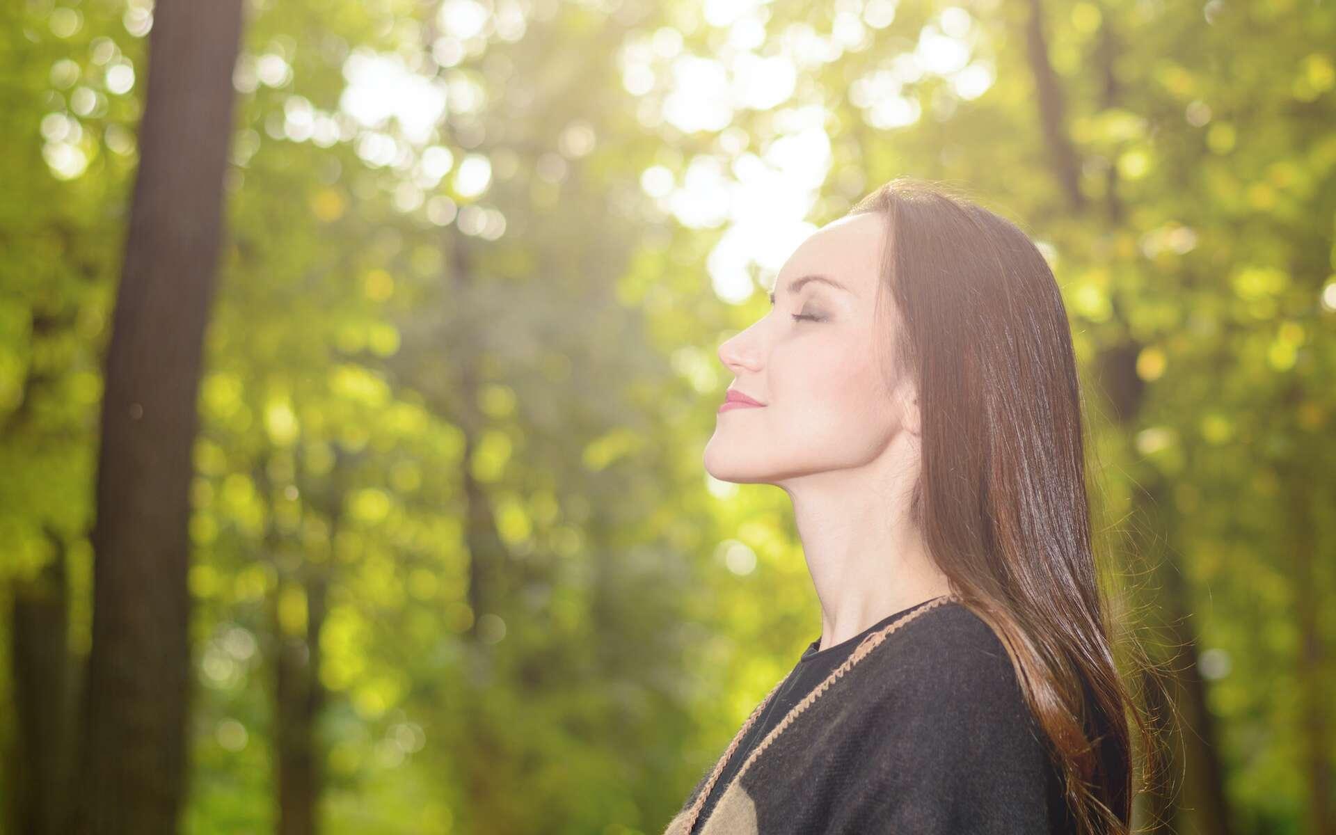 La respiration absorbe de l'oxygène et émet du CO2. © Руслан Галиуллин, Adobe Stock