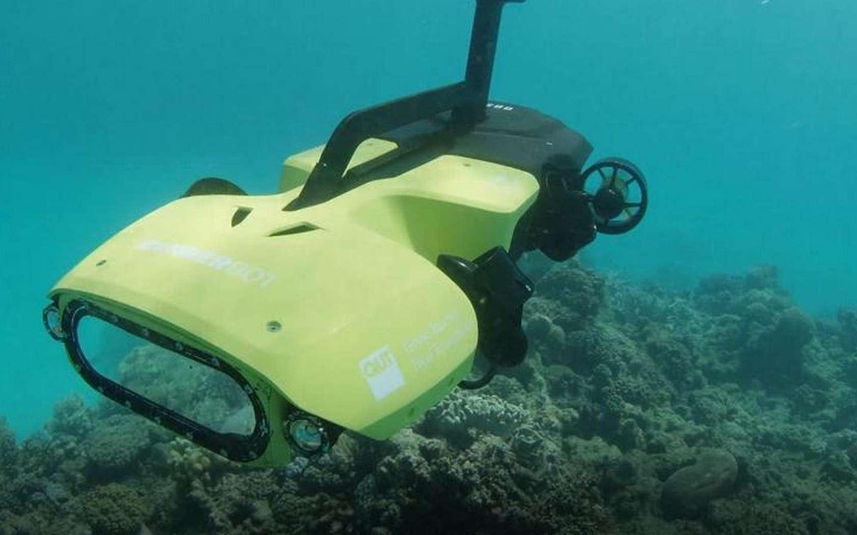 Le RangerBot a été conçu pour être peu onéreux à fabriquer afin de favoriser son déploiement à grande échelle. © Queensland University of Technology