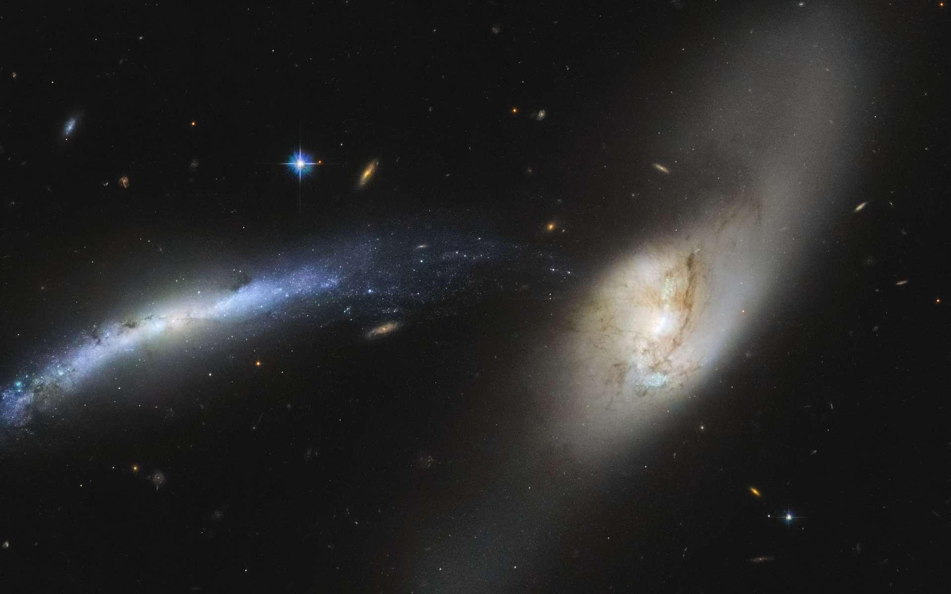 Les collisions font partie de la vie des galaxies. Mais parvenir à établir quels types de collisions ont façonné une galaxie et plus encore notre Voie lactée n'est pas aisé. Des chercheurs de l'université de Heidelberg (Allemagne) y sont pourtant parvenus. Ils présentent aujourd'hui, un premier arbre généalogique de notre Galaxie. En image, rencontre entre les galaxies NGC 2799 (à gauche) et NGC 2798 (à droite) photographiée par le télescope spatial Hubble. © ESA, Hubble, Nasa, SDSS, J. Dalcanton, Judy Schmidt (Geckzilla) © allexxandarx, Adobe Stock