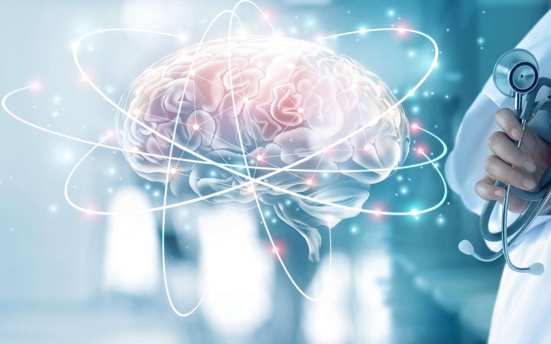 Selon des chercheurs coréens, un stress chronique entraînerait la destruction de cellules souches neurales dans l'hippocampe adulte. © ipopba, Fotolia