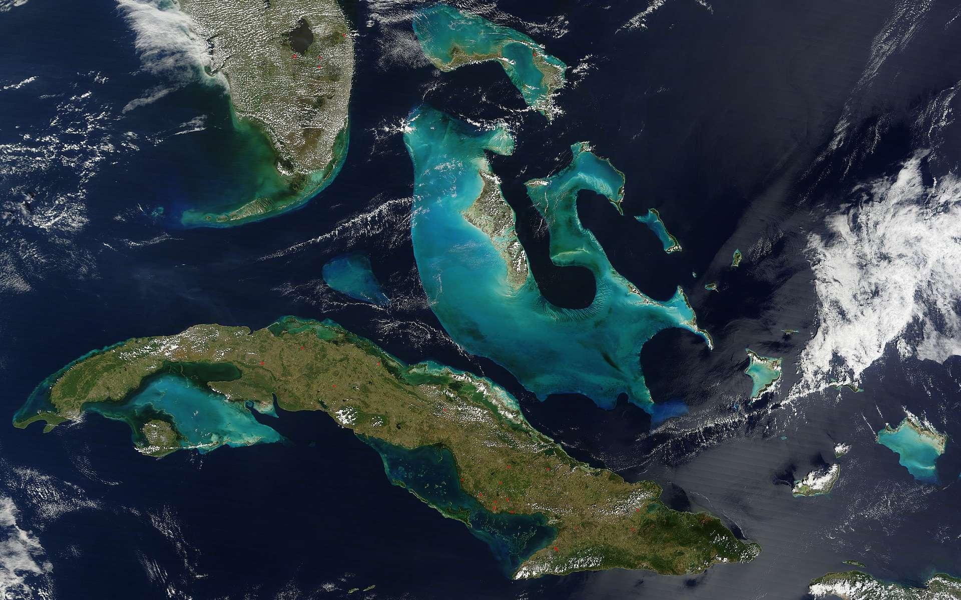 Cette image des Bahamas a été obtenue grâce à l'instrument Modis à bord du satellite Terra permettant d'étudier l'évolution de la couverture végétale de la Terre. © Nasa