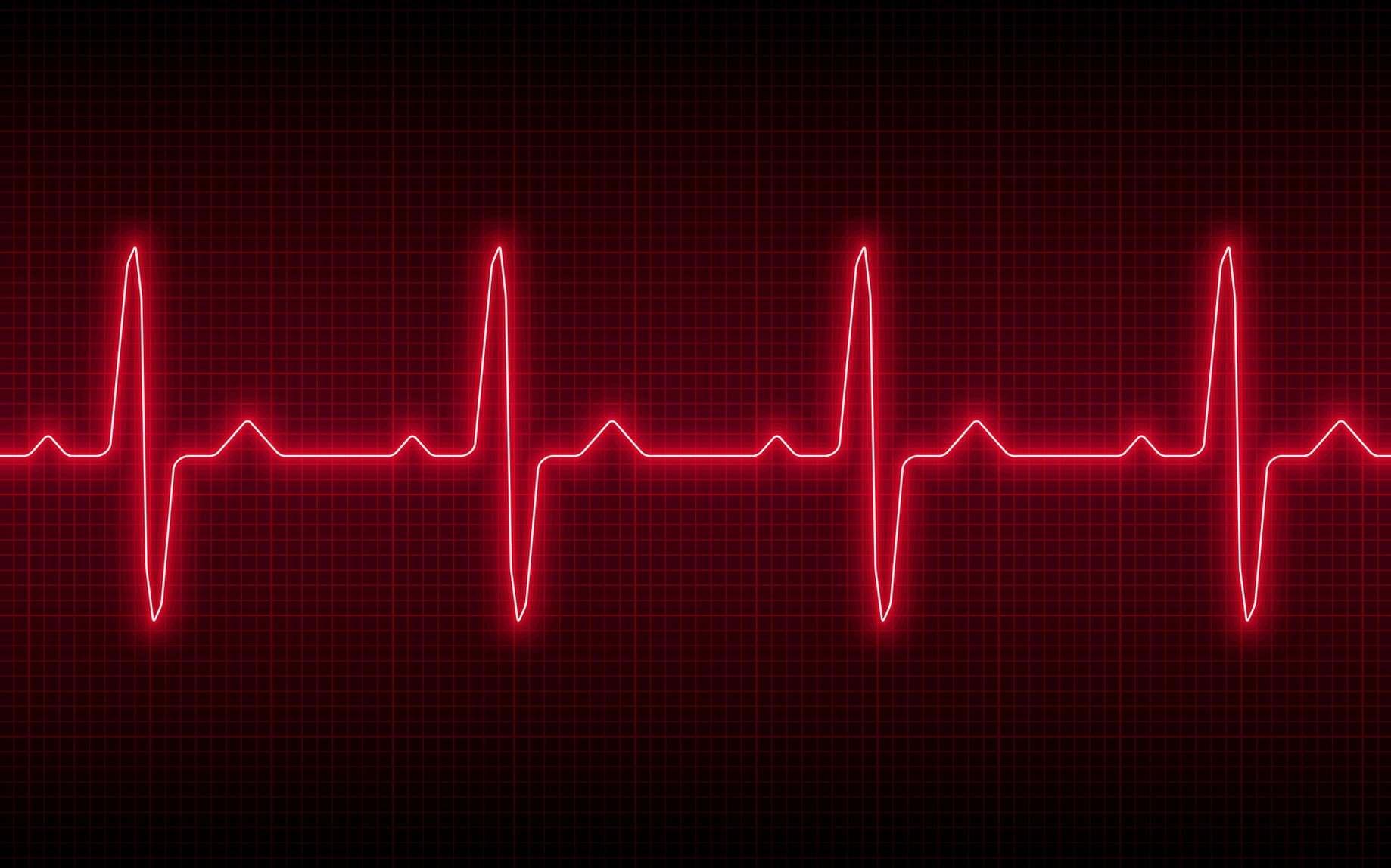L'arythmie est une anomalie du rythme cardiaque. © Vladislav Vasiullin, Fotolia