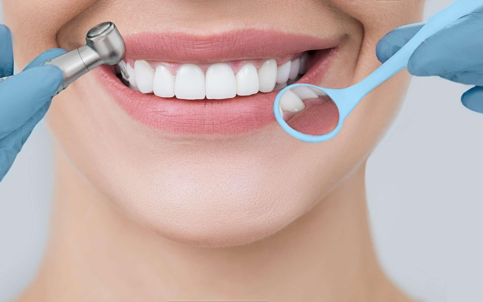 Les Français prennent-ils sont de leur dents ? © Erica Smit, Adobe Stock