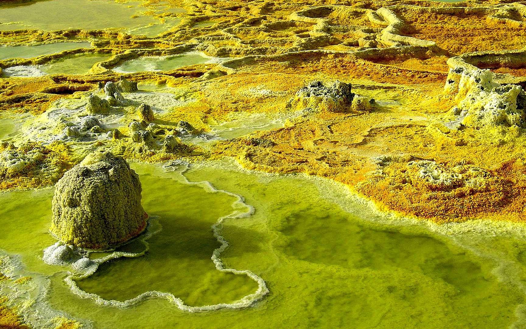 Source près du volcan Dallol, en Éthiopie. Source thermo-minérale près du volcan Dallol, en Éthiopie. © J.-M. Bardintzeff, reproduction et utilisation interdites