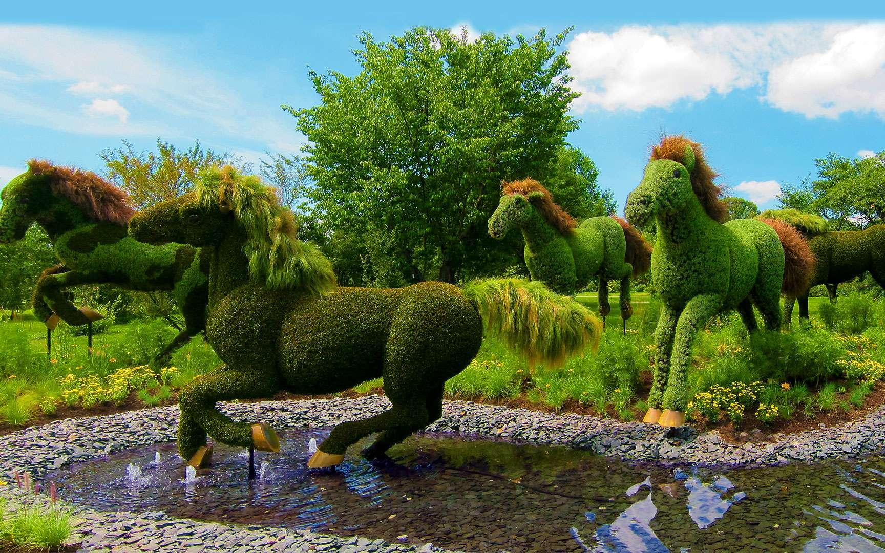 Sculpture végétale représentant les chevaux de la Terre-Mère. Sur cette portion de la splendide sculpture de la Terre-Mère, on peut apercevoir une prairie au milieu de laquelle courent des chevaux. © Andre Vandal, Flickr, CC by-nc-nd 2.0