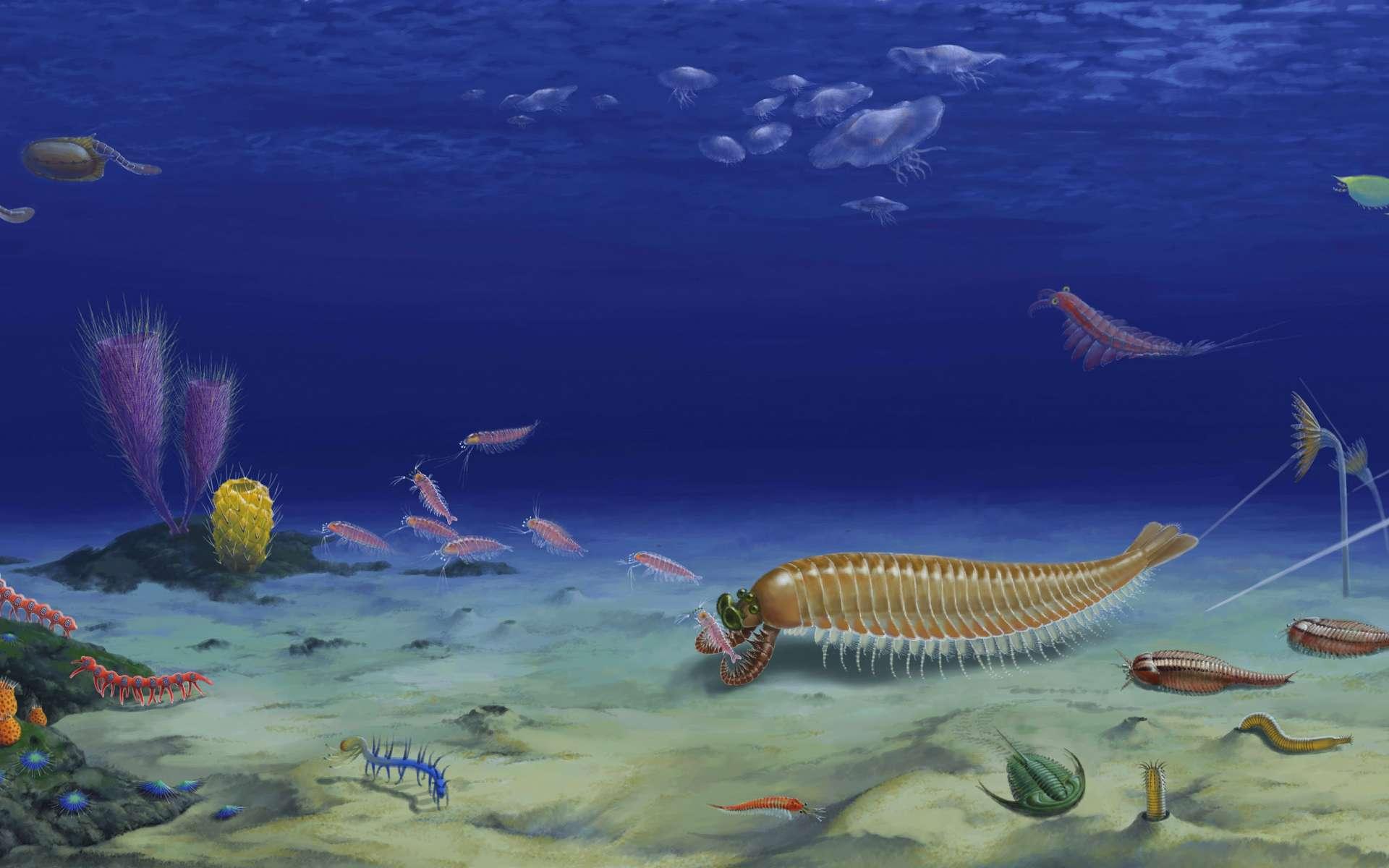 Reconstitution de l'environnement marin de Kylinxia pendant la période cambrienne. © Huang Diying